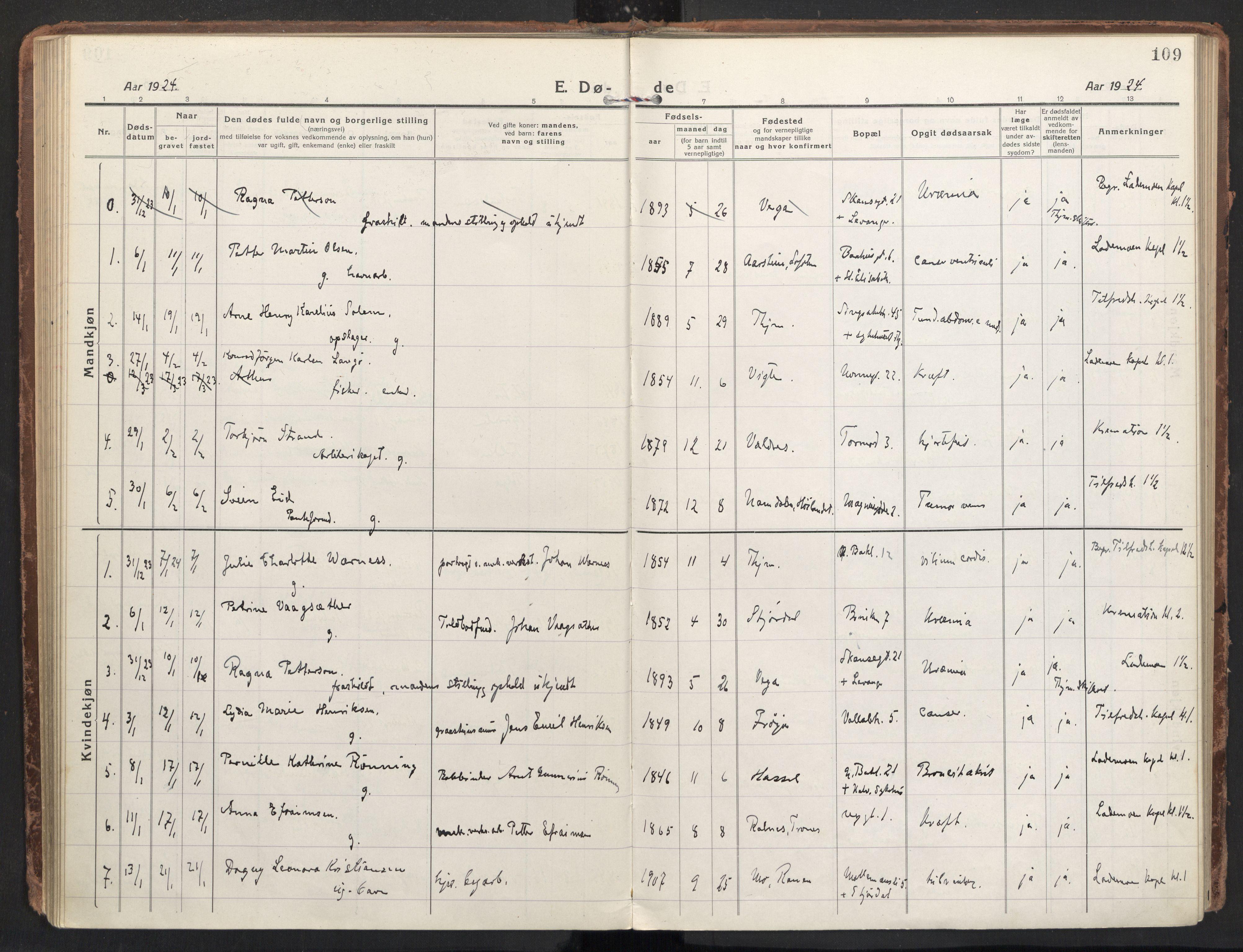 SAT, Ministerialprotokoller, klokkerbøker og fødselsregistre - Sør-Trøndelag, 604/L0207: Ministerialbok nr. 604A27, 1917-1933, s. 109