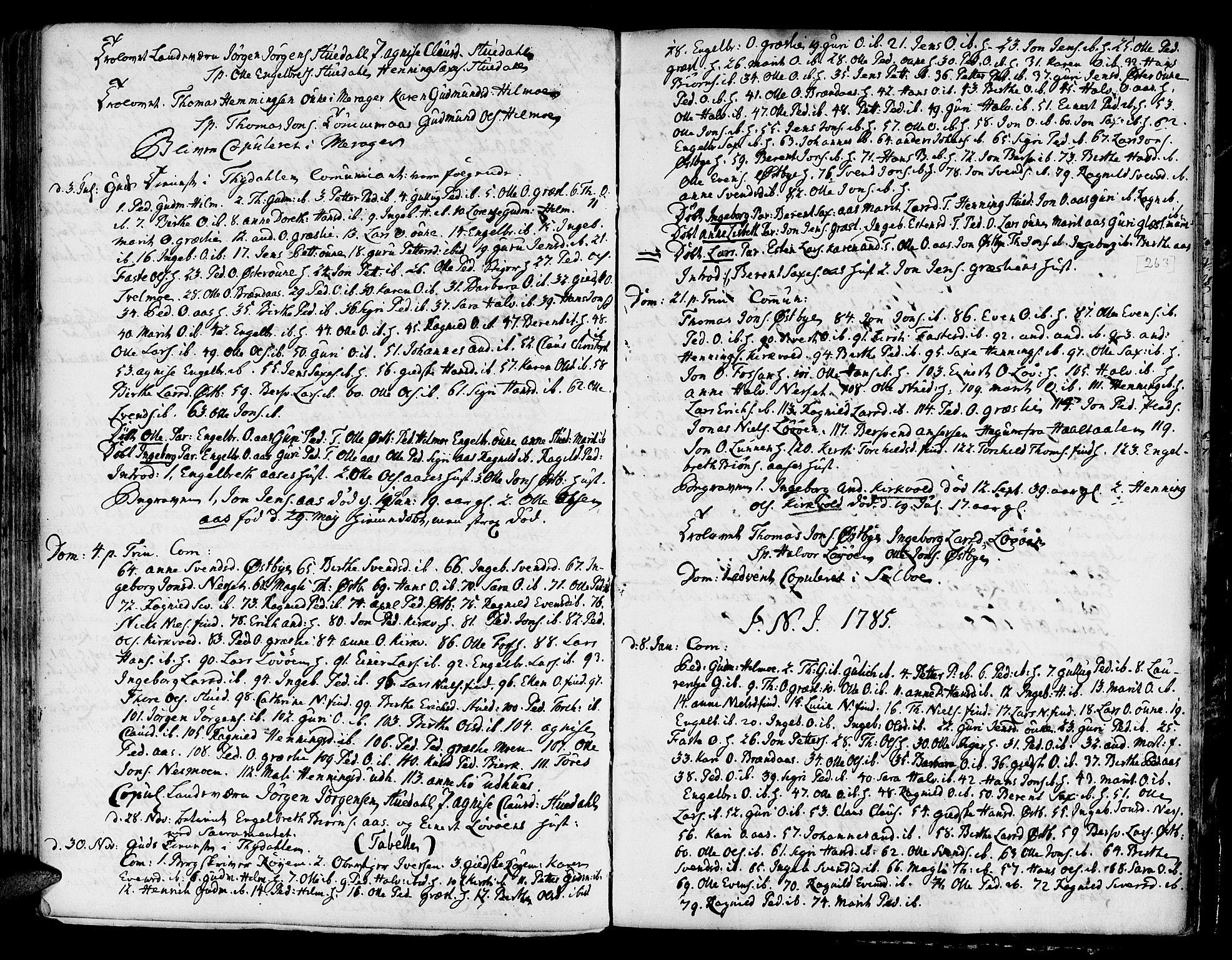 SAT, Ministerialprotokoller, klokkerbøker og fødselsregistre - Sør-Trøndelag, 695/L1139: Ministerialbok nr. 695A02 /2, 1776-1790, s. 263