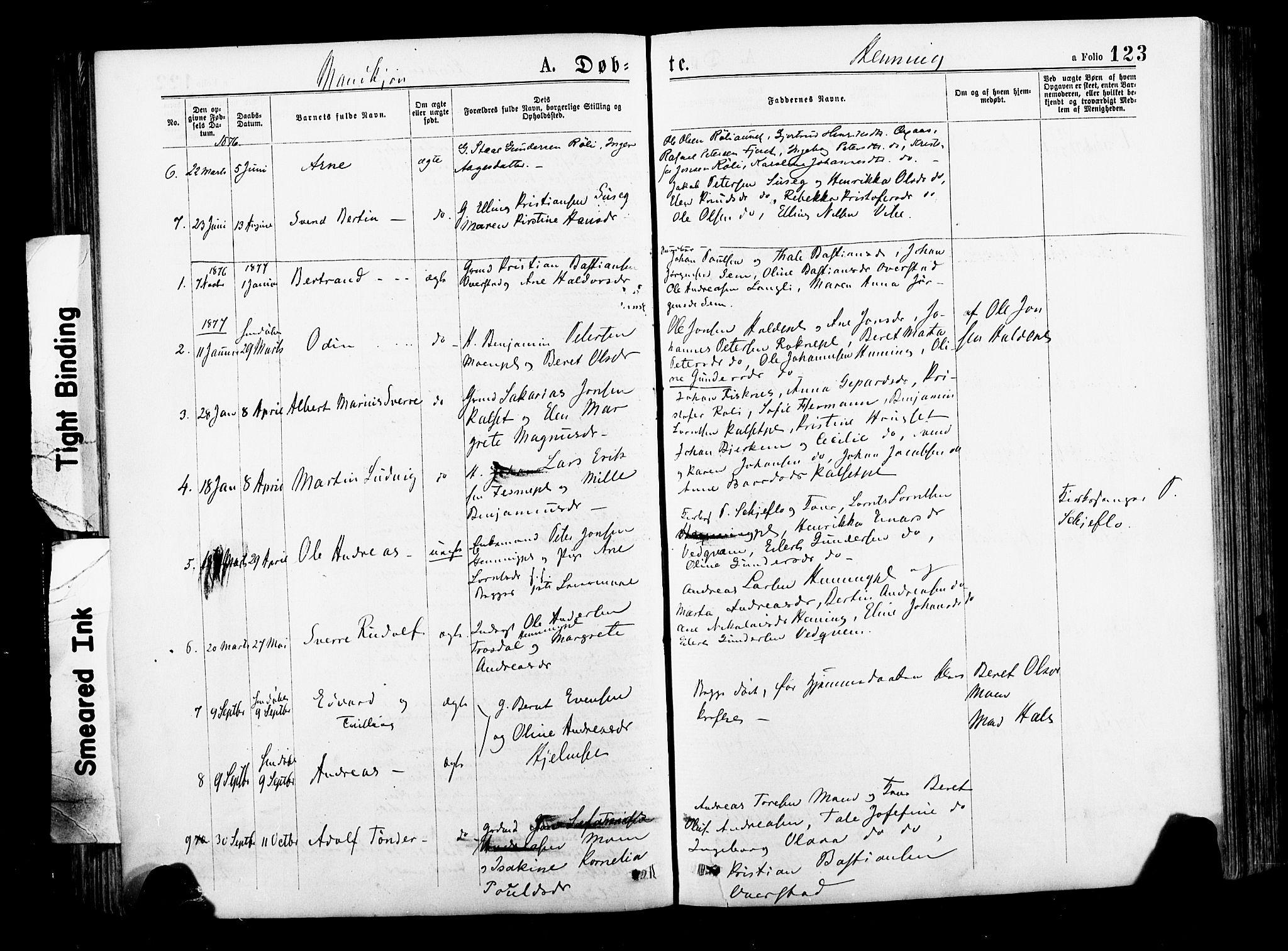 SAT, Ministerialprotokoller, klokkerbøker og fødselsregistre - Nord-Trøndelag, 735/L0348: Ministerialbok nr. 735A09 /3, 1873-1883, s. 123