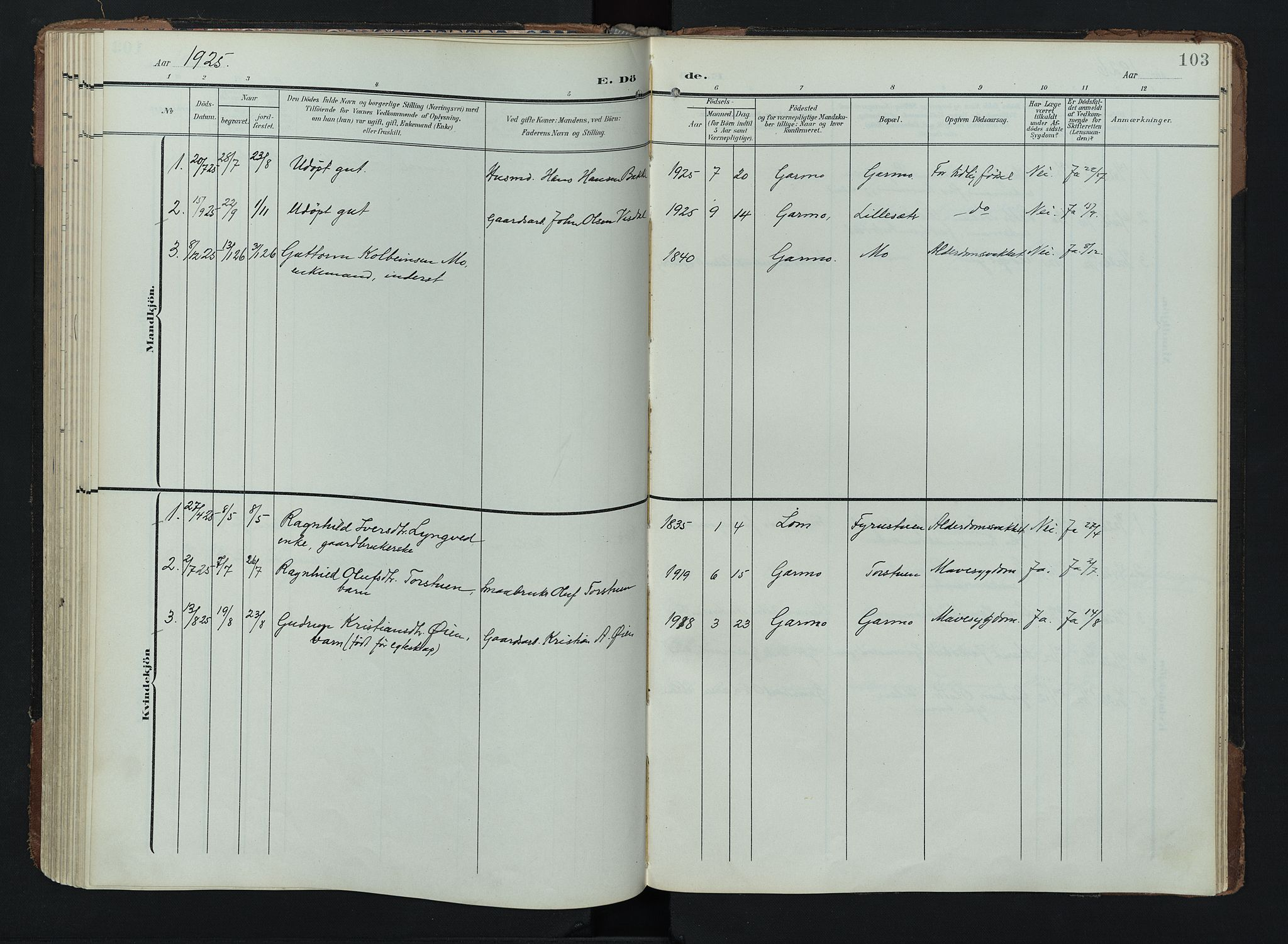 SAH, Lom prestekontor, K/L0011: Ministerialbok nr. 11, 1904-1928, s. 103