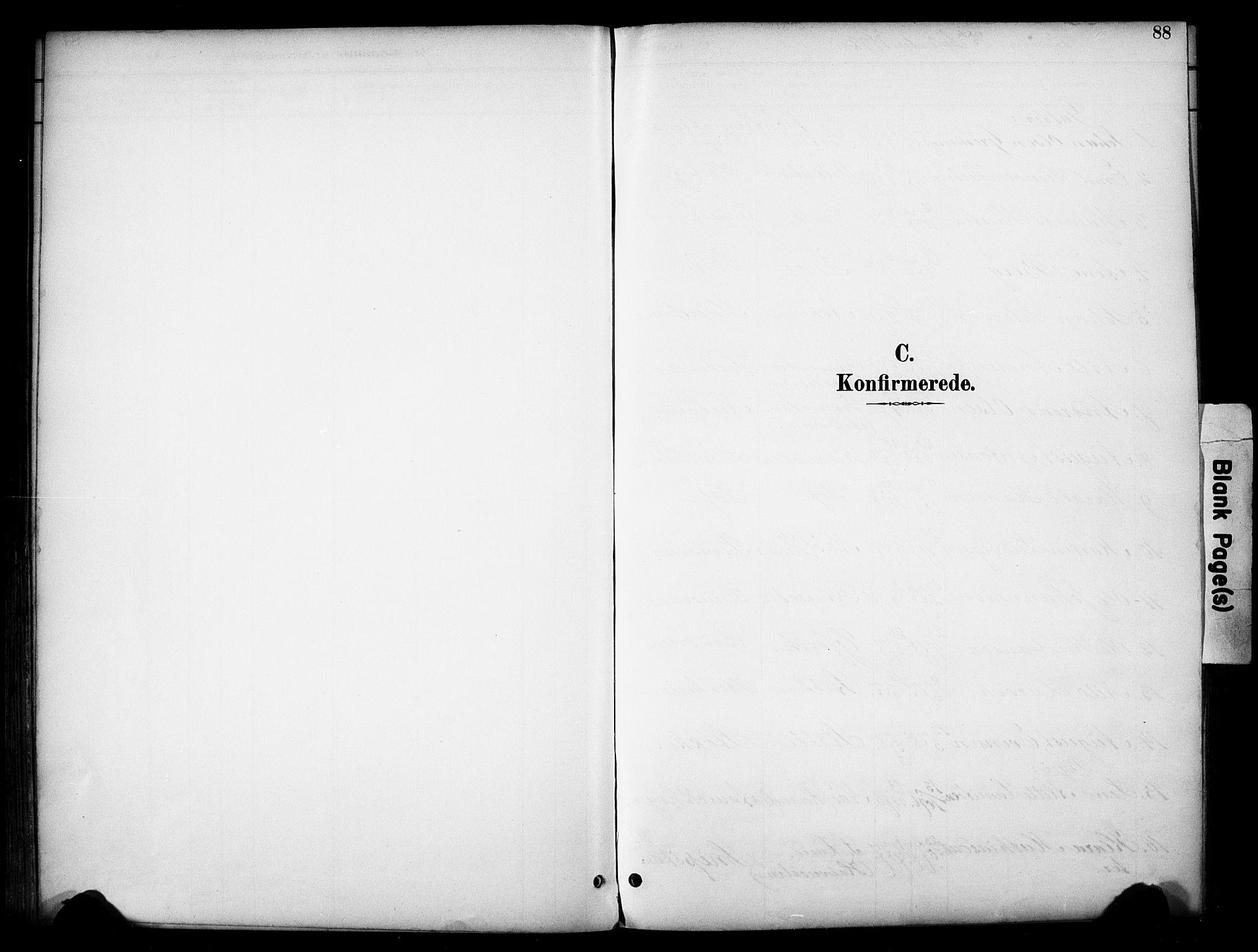 SAH, Vardal prestekontor, H/Ha/Haa/L0012: Ministerialbok nr. 12, 1893-1904, s. 88