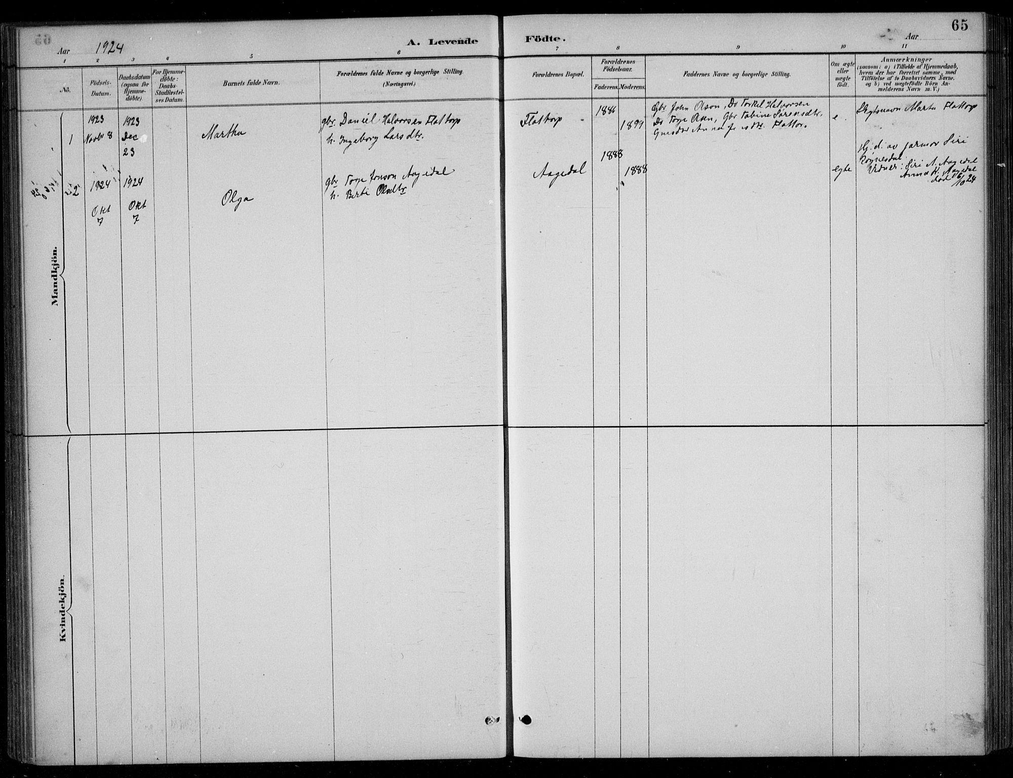 SAK, Bjelland sokneprestkontor, F/Fb/Fbc/L0003: Klokkerbok nr. B 3, 1887-1924, s. 65