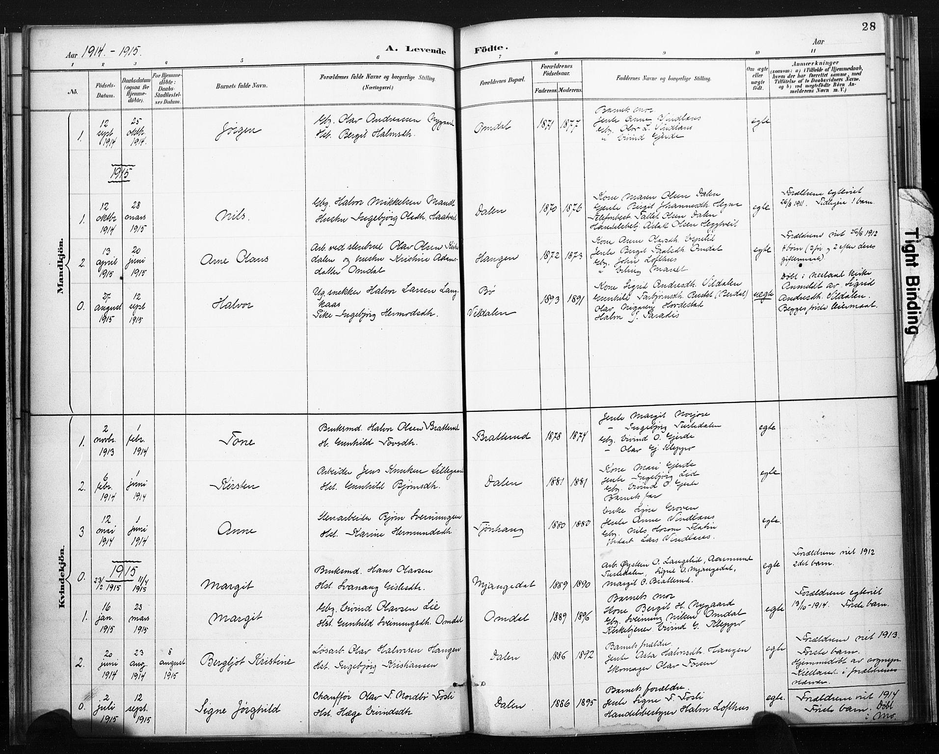 SAKO, Lårdal kirkebøker, F/Fb/L0002: Ministerialbok nr. II 2, 1887-1918, s. 28