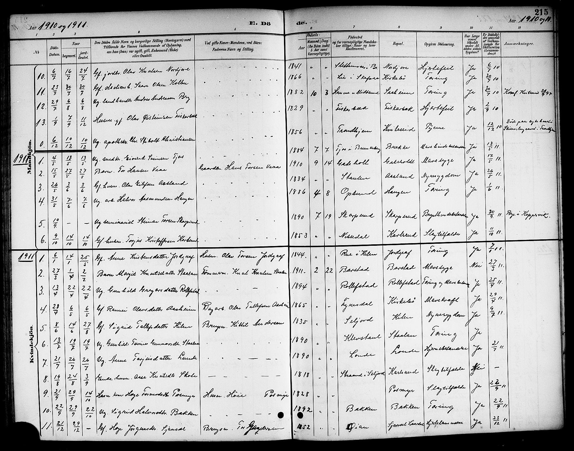 SAKO, Kviteseid kirkebøker, G/Ga/L0002: Klokkerbok nr. I 2, 1893-1918, s. 215