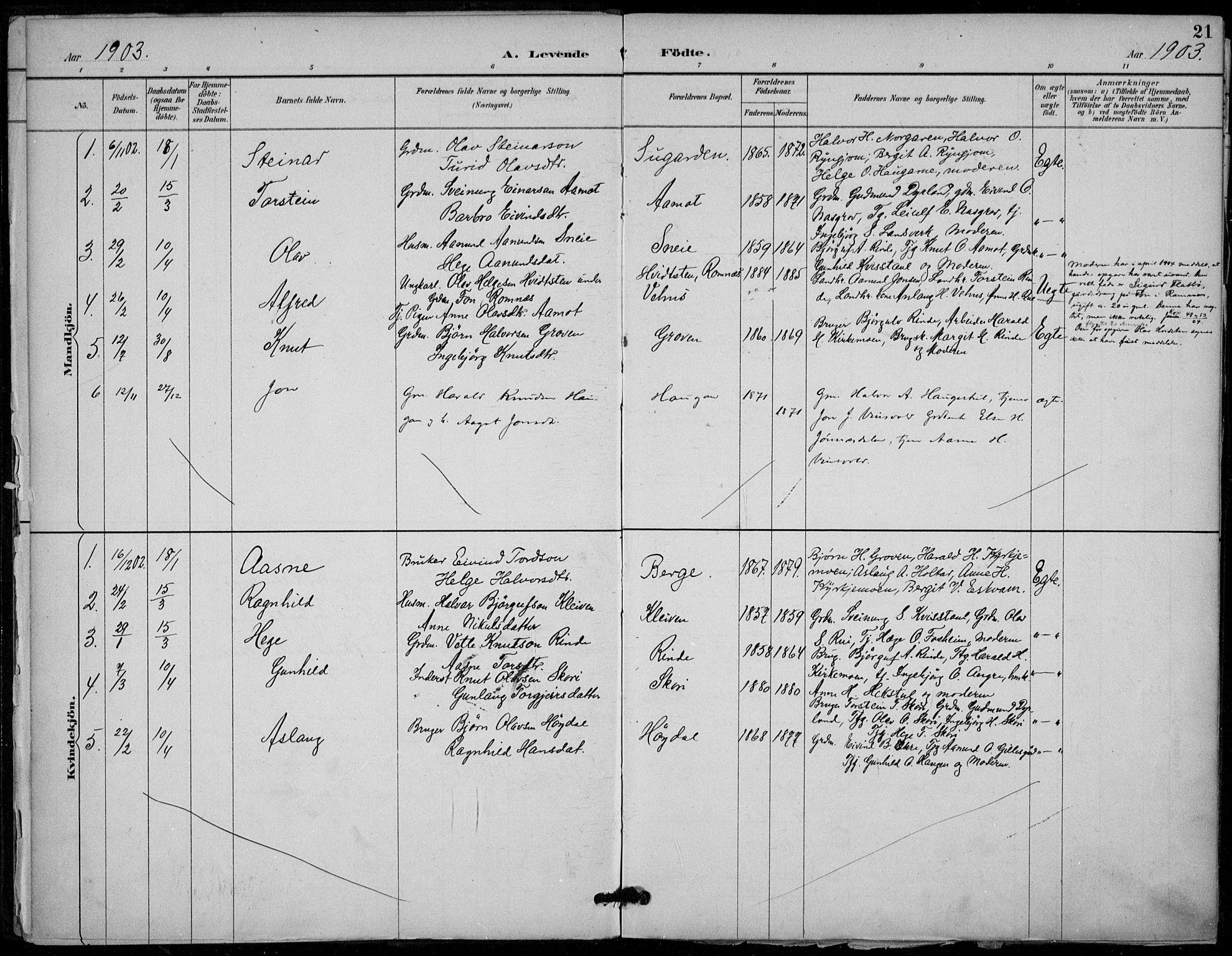 SAKO, Seljord kirkebøker, F/Fc/L0002: Ministerialbok nr. III 2, 1887-1920, s. 21