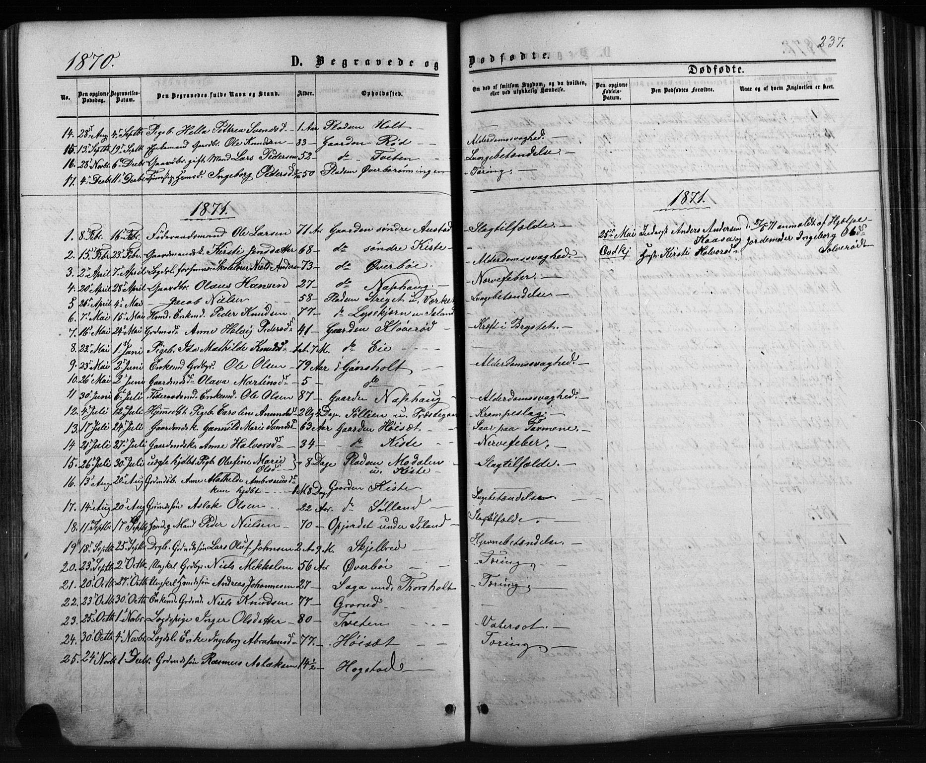 SAKO, Siljan kirkebøker, G/Ga/L0002: Klokkerbok nr. 2, 1864-1908, s. 237
