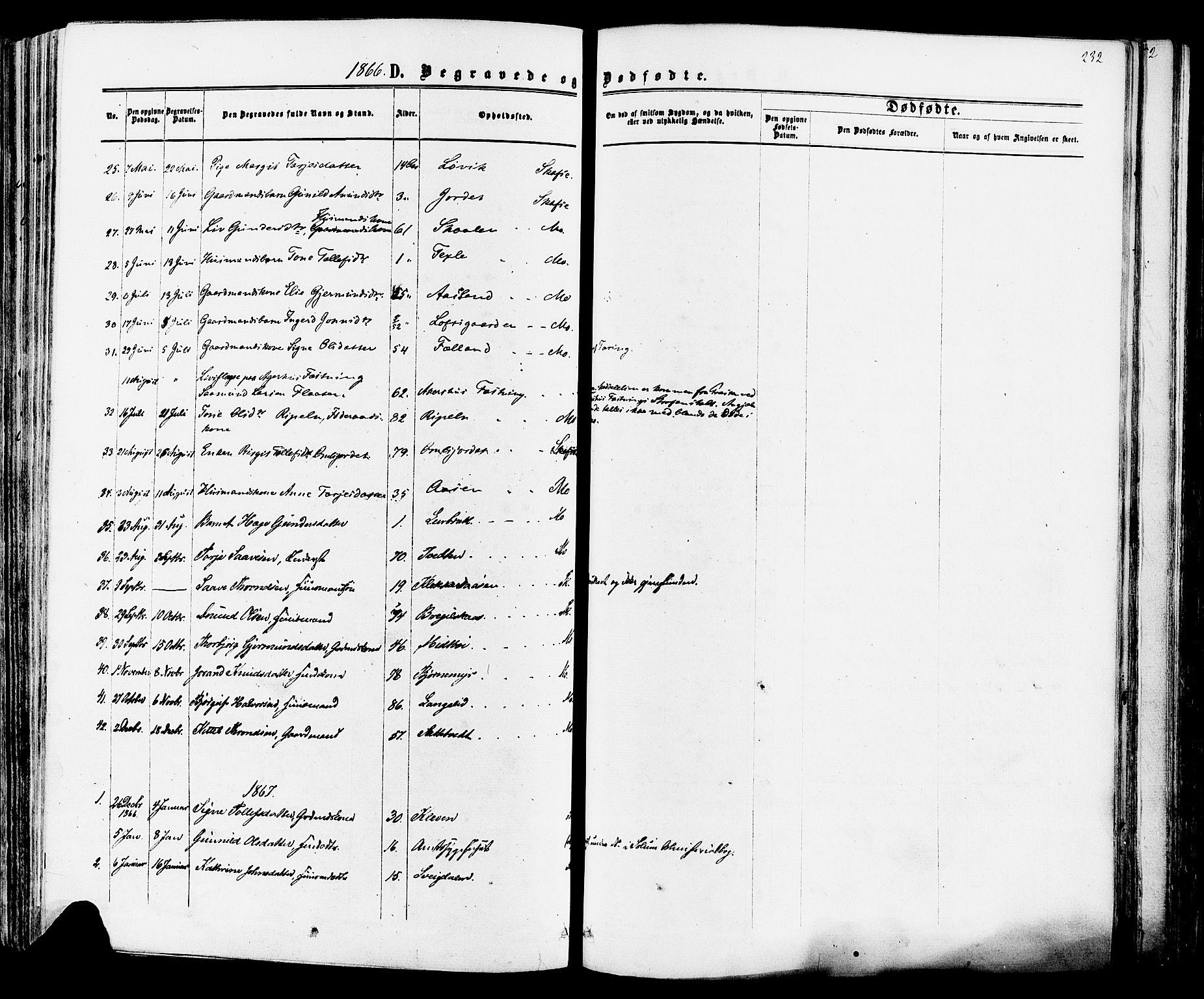 SAKO, Mo kirkebøker, F/Fa/L0006: Ministerialbok nr. I 6, 1865-1885, s. 232