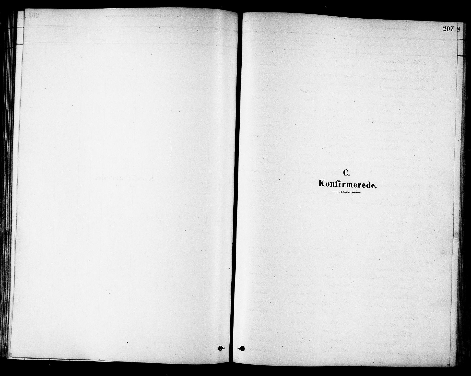 SAT, Ministerialprotokoller, klokkerbøker og fødselsregistre - Sør-Trøndelag, 695/L1148: Ministerialbok nr. 695A08, 1878-1891, s. 207
