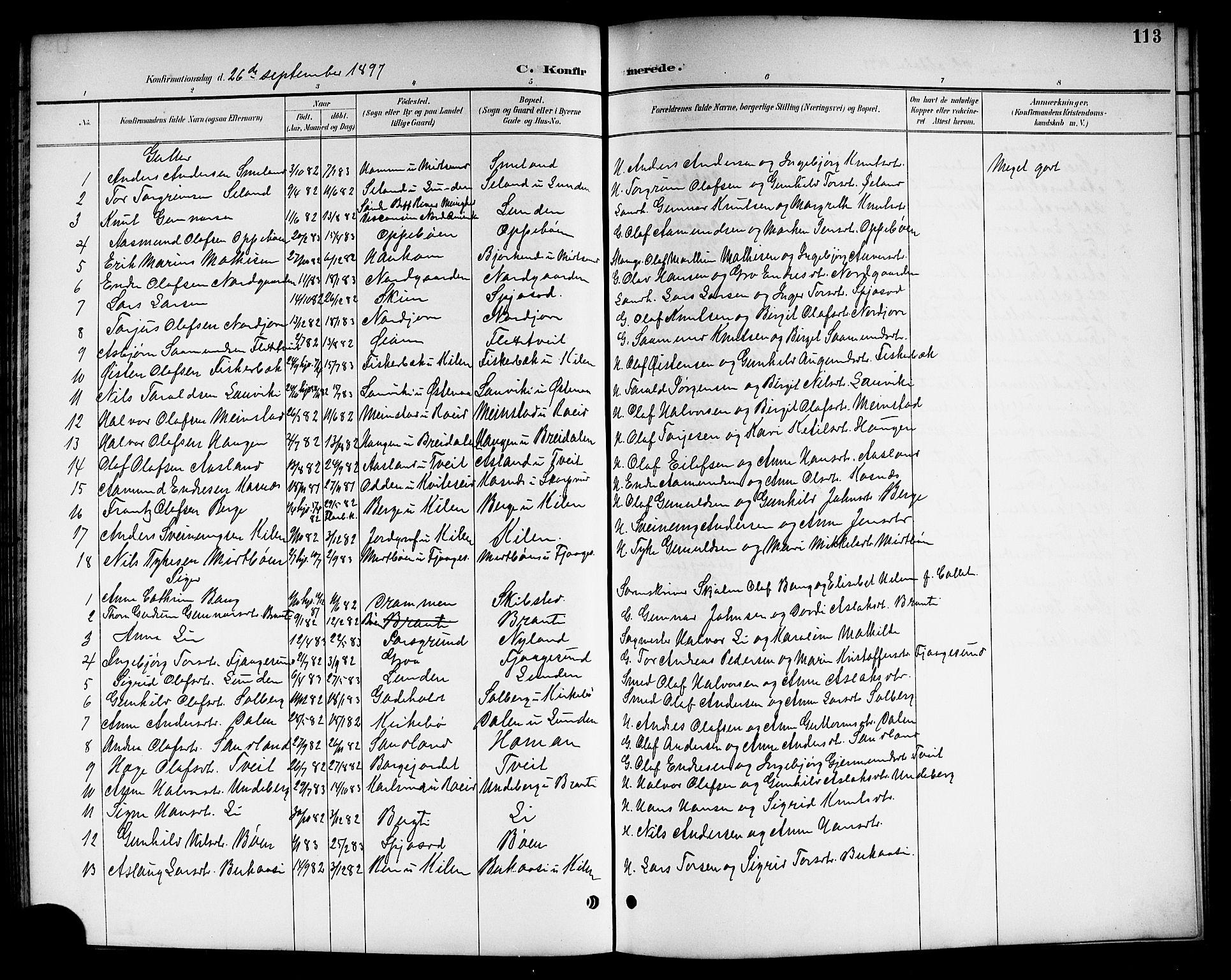 SAKO, Kviteseid kirkebøker, G/Ga/L0002: Klokkerbok nr. I 2, 1893-1918, s. 113