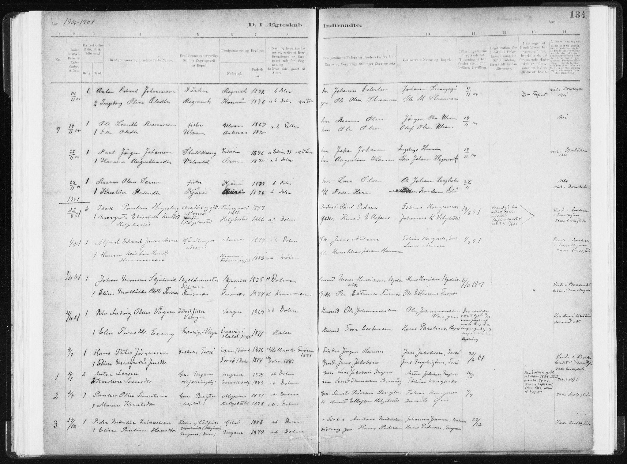 SAT, Ministerialprotokoller, klokkerbøker og fødselsregistre - Sør-Trøndelag, 634/L0533: Ministerialbok nr. 634A09, 1882-1901, s. 134