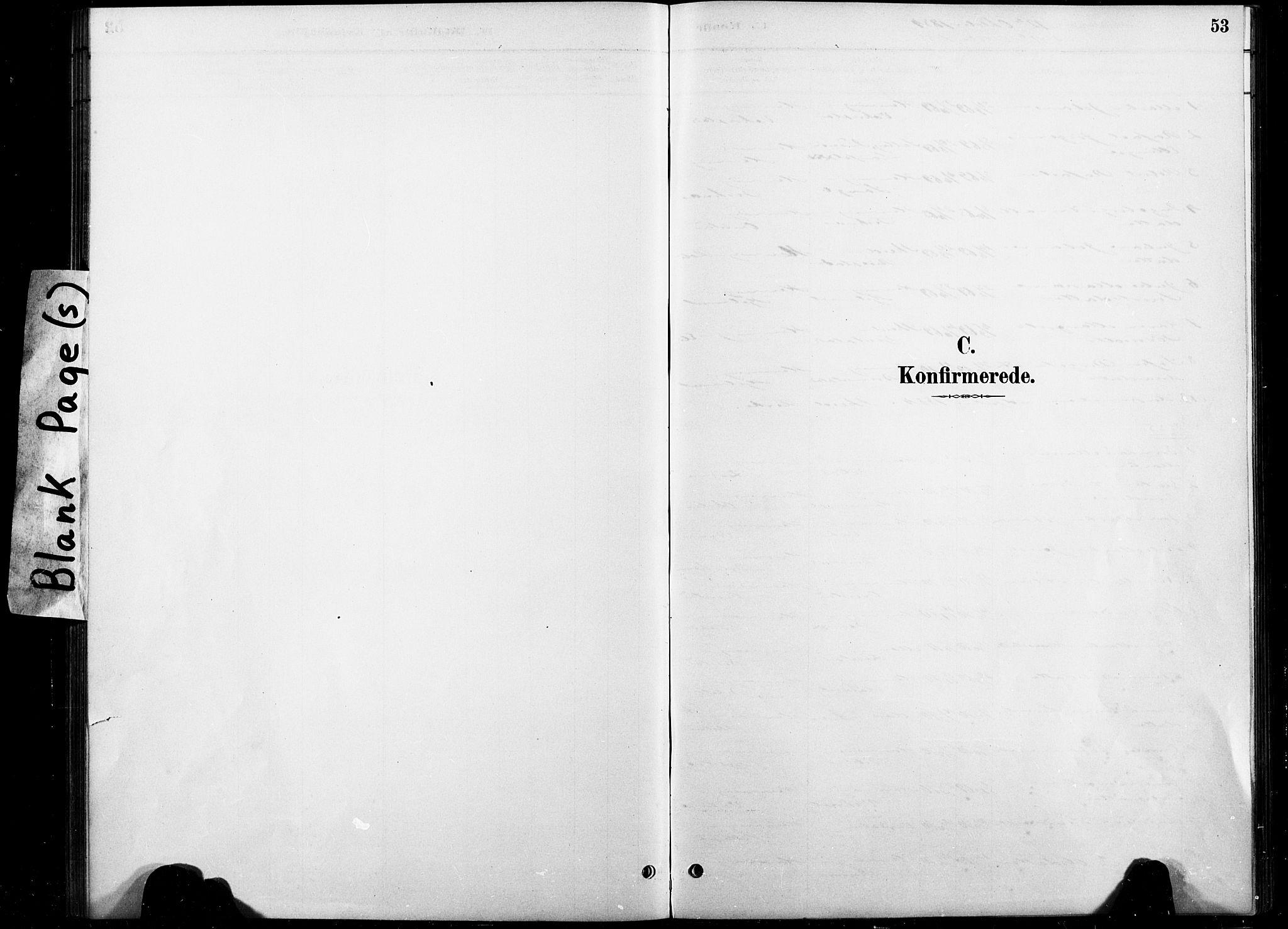 SAT, Ministerialprotokoller, klokkerbøker og fødselsregistre - Nord-Trøndelag, 738/L0364: Ministerialbok nr. 738A01, 1884-1902, s. 53