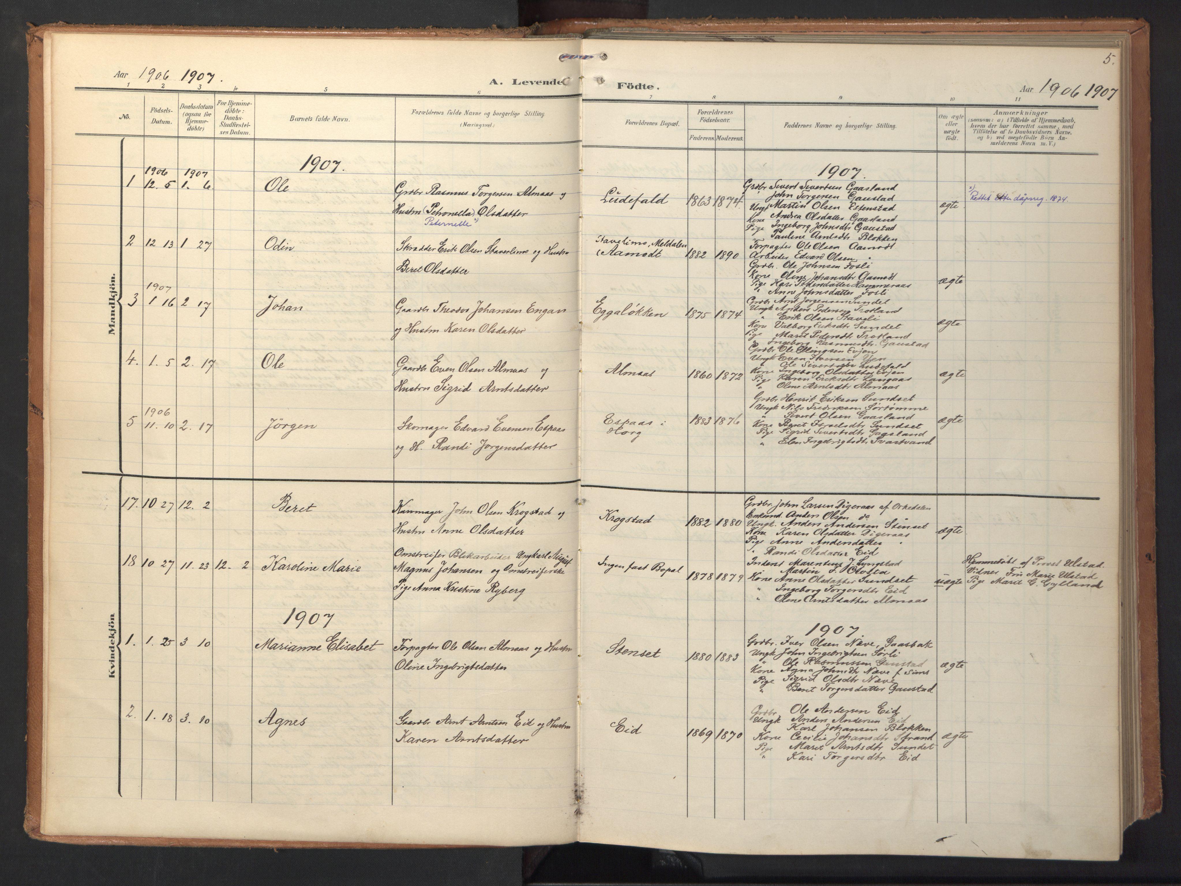 SAT, Ministerialprotokoller, klokkerbøker og fødselsregistre - Sør-Trøndelag, 694/L1128: Ministerialbok nr. 694A02, 1906-1931, s. 5