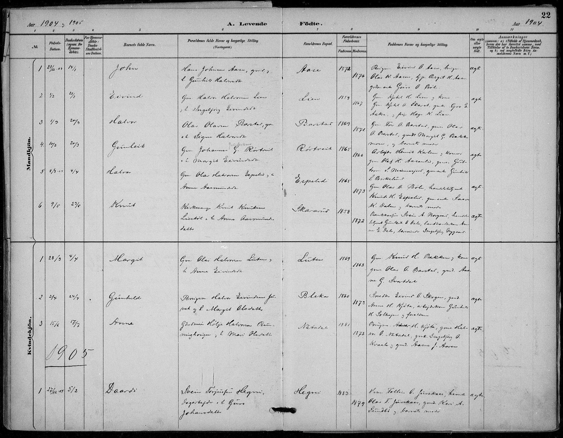 SAKO, Seljord kirkebøker, F/Fb/L0002: Ministerialbok nr. II 2, 1887-1917, s. 22