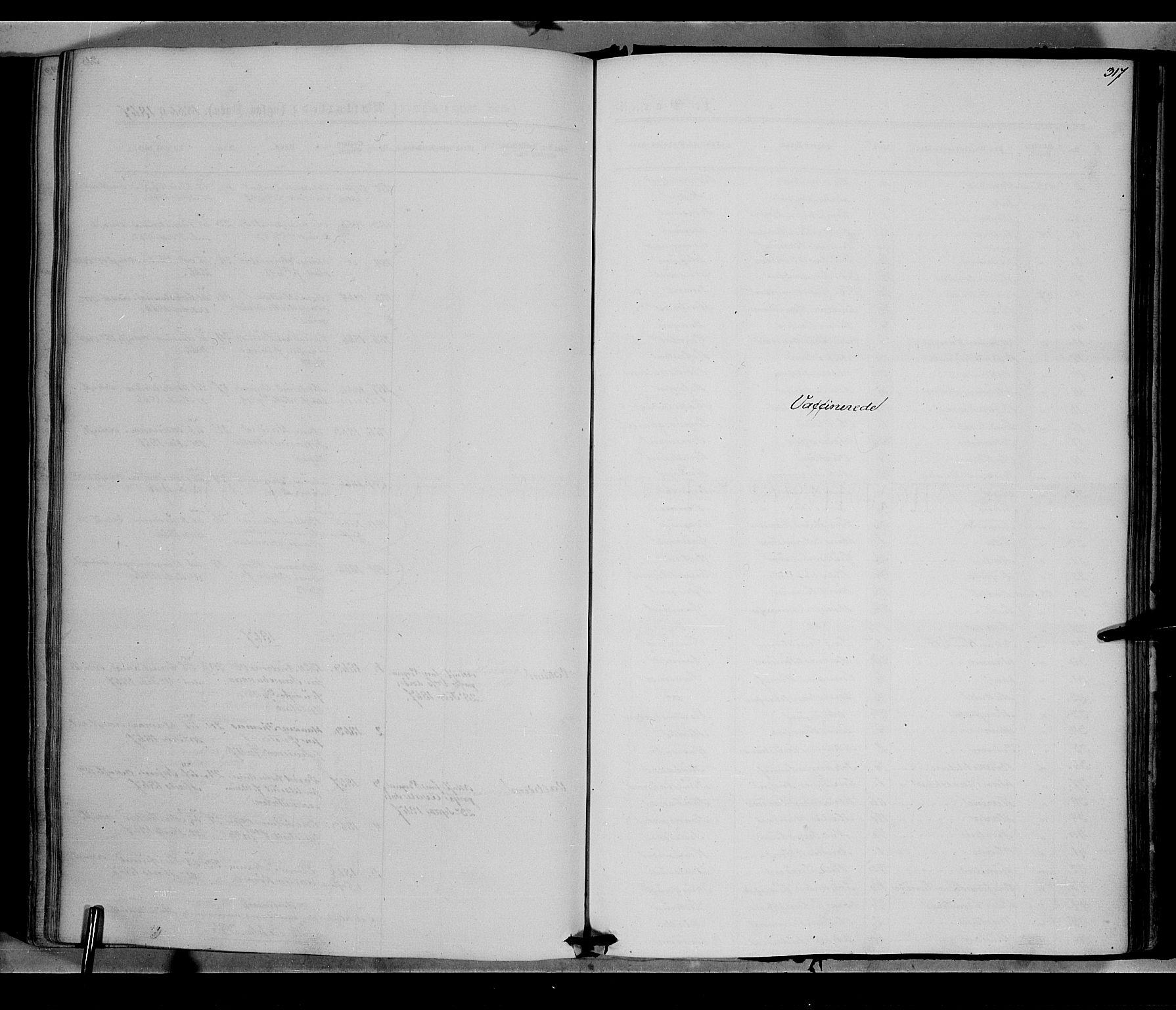 SAH, Vestre Toten prestekontor, Ministerialbok nr. 7, 1862-1869, s. 317