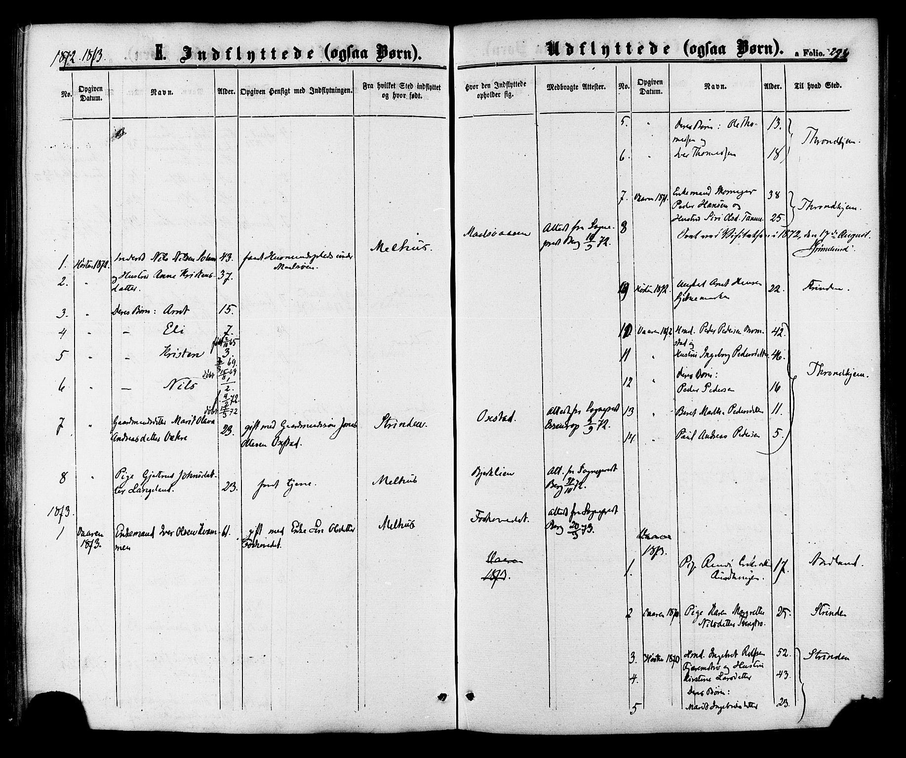 SAT, Ministerialprotokoller, klokkerbøker og fødselsregistre - Sør-Trøndelag, 618/L0442: Ministerialbok nr. 618A06 /1, 1863-1879, s. 294