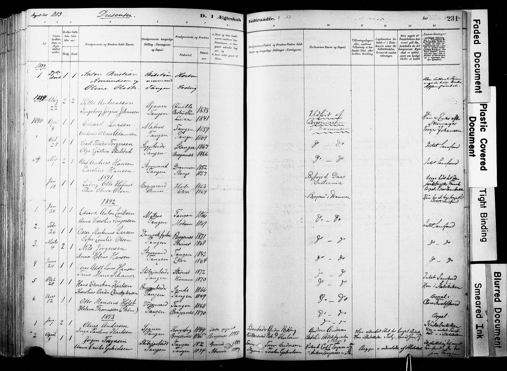 SAKO, Strømsø kirkebøker, F/Fb/L0006: Ministerialbok nr. II 6, 1879-1910, s. 231