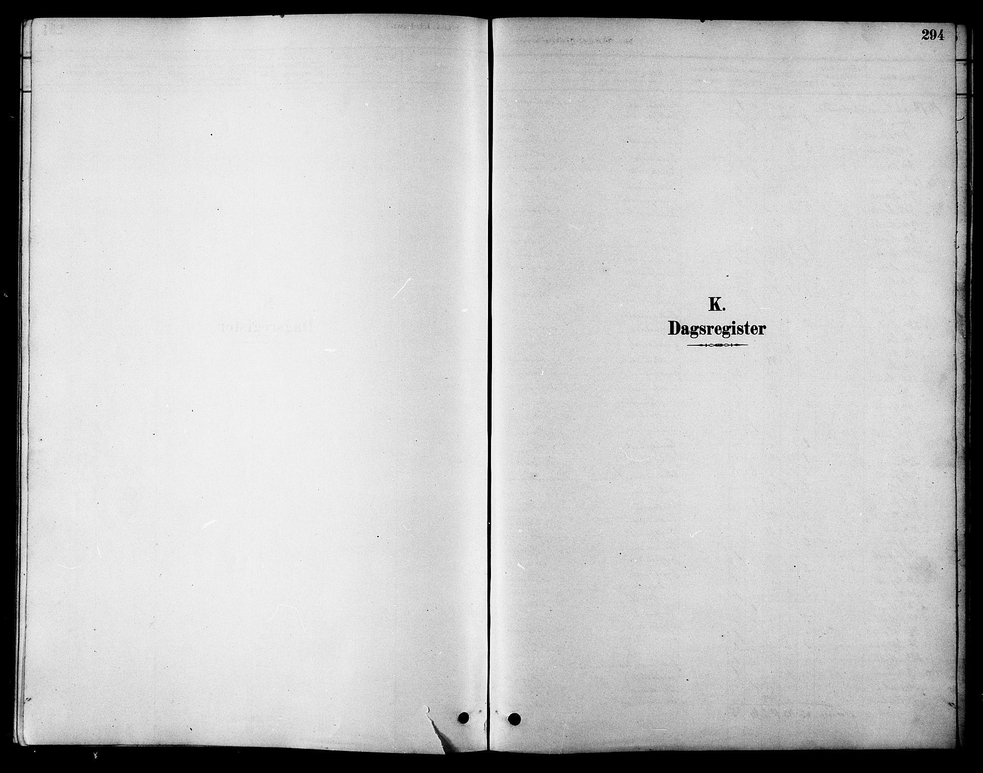 SAT, Ministerialprotokoller, klokkerbøker og fødselsregistre - Sør-Trøndelag, 616/L0423: Klokkerbok nr. 616C06, 1878-1903, s. 294