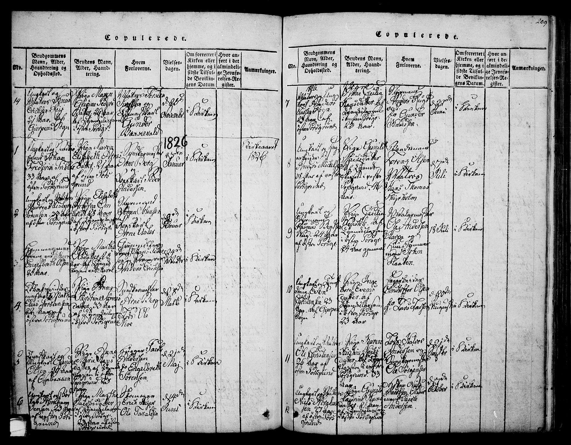 SAKO, Porsgrunn kirkebøker , F/Fa/L0004: Ministerialbok nr. 4, 1814-1828, s. 209
