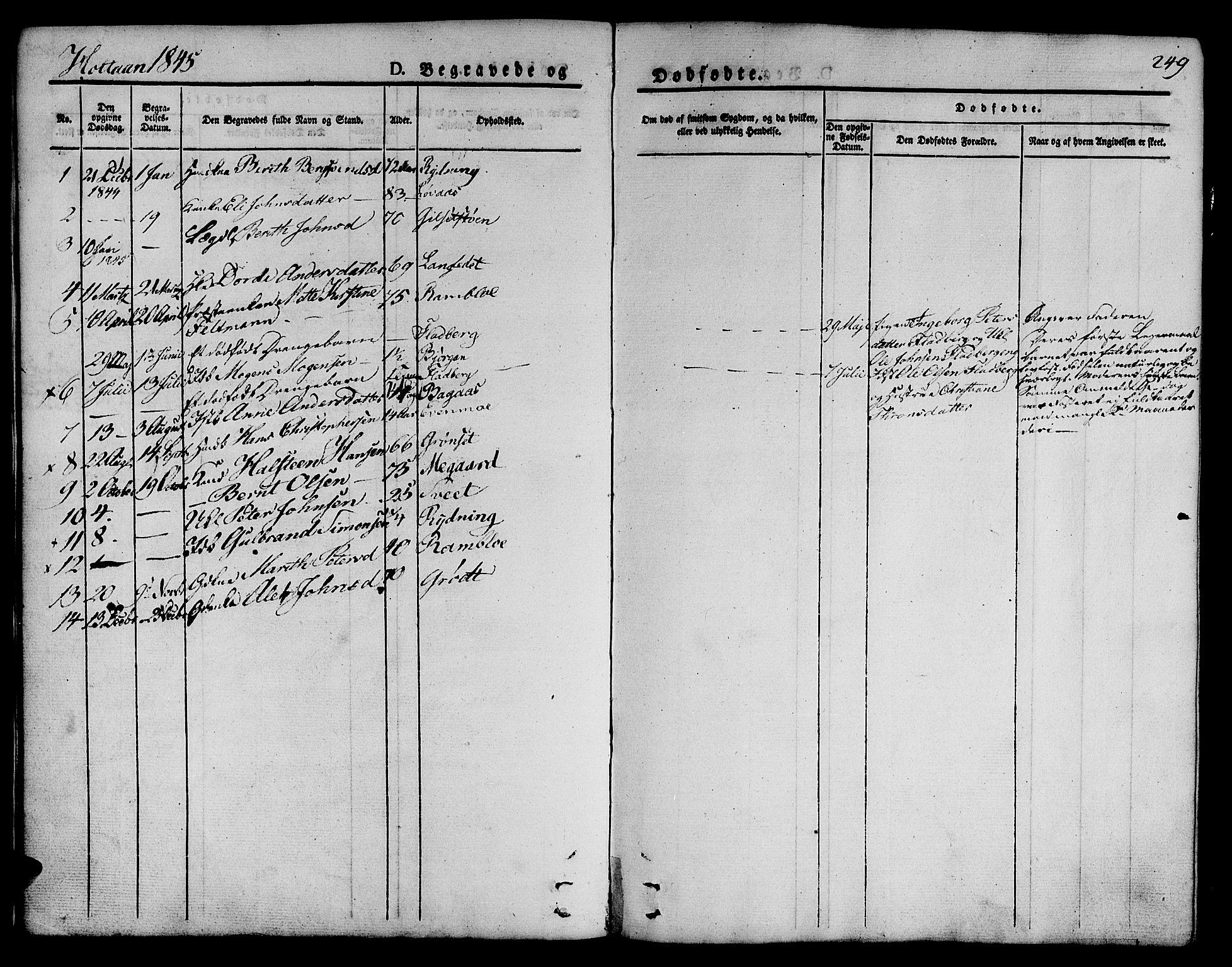 SAT, Ministerialprotokoller, klokkerbøker og fødselsregistre - Sør-Trøndelag, 685/L0960: Ministerialbok nr. 685A05 /1, 1829-1845, s. 249