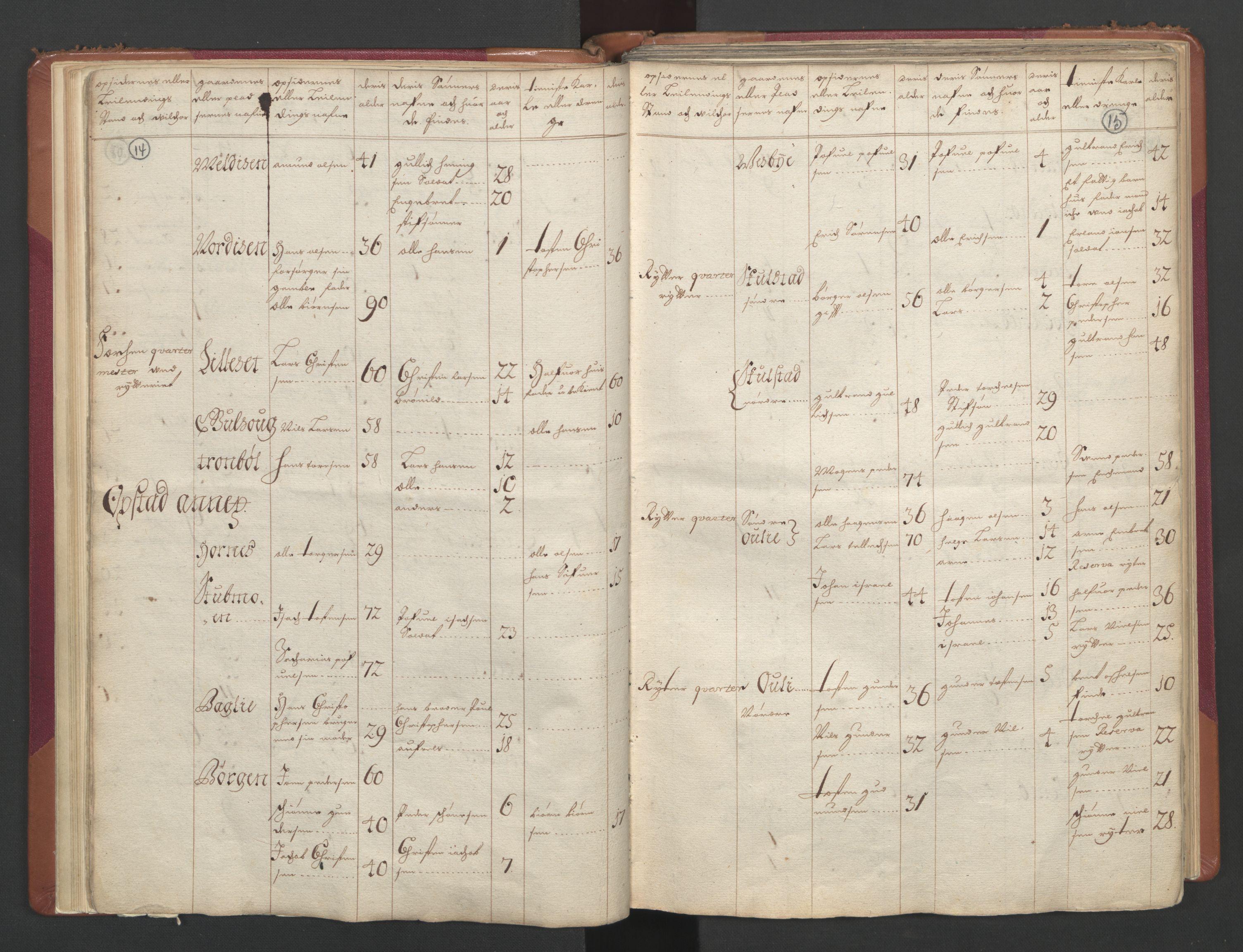 RA, Manntallet 1701, nr. 2: Solør, Odal og Østerdal fogderi og Larvik grevskap, 1701, s. 14-15