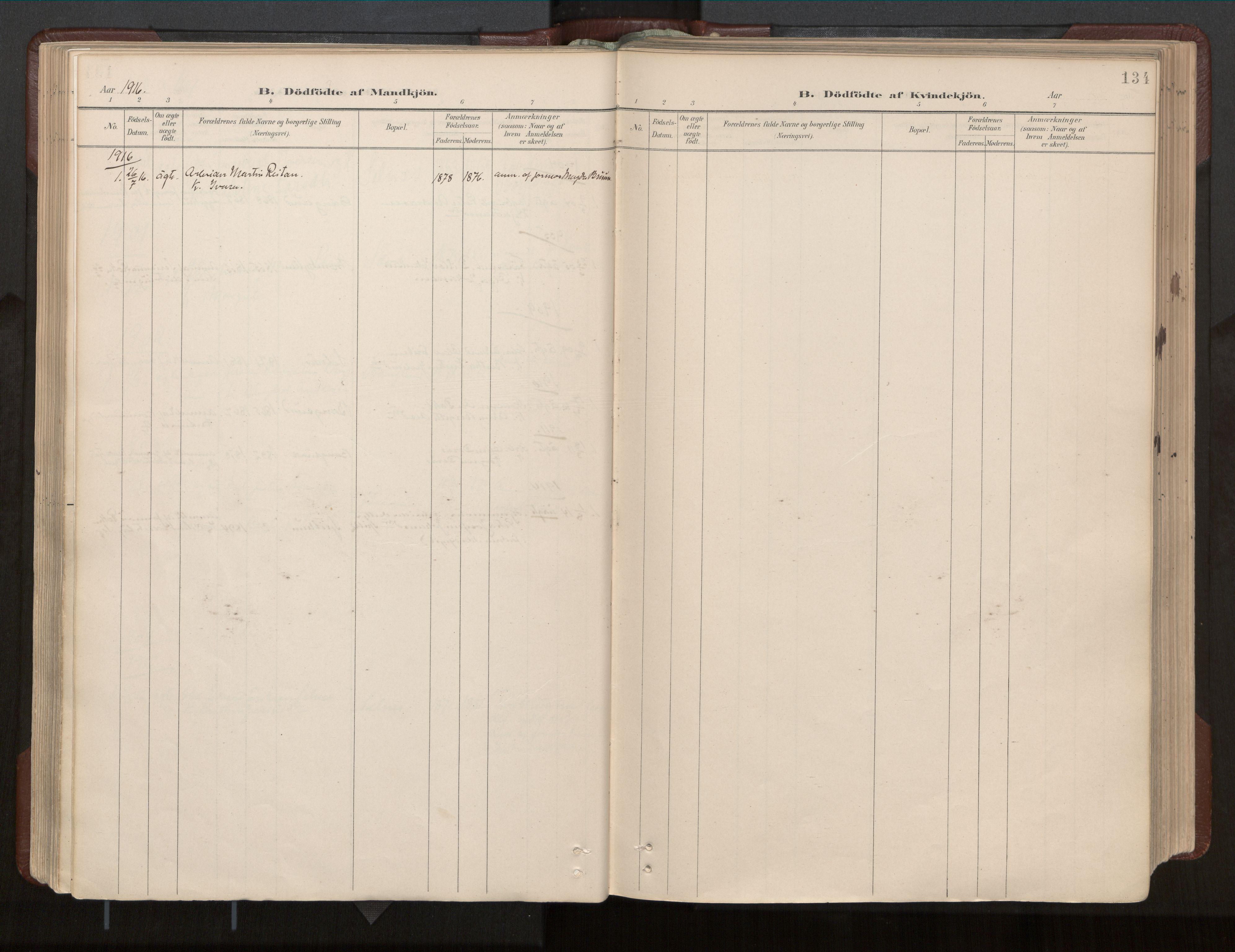 SAT, Ministerialprotokoller, klokkerbøker og fødselsregistre - Nord-Trøndelag, 770/L0589: Ministerialbok nr. 770A03, 1887-1929, s. 134
