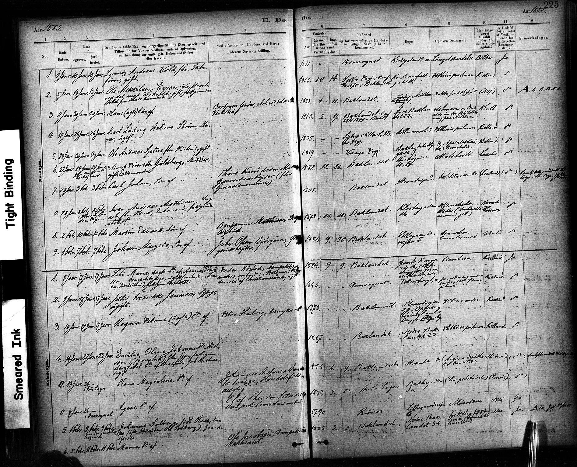 SAT, Ministerialprotokoller, klokkerbøker og fødselsregistre - Sør-Trøndelag, 604/L0189: Ministerialbok nr. 604A10, 1878-1892, s. 225