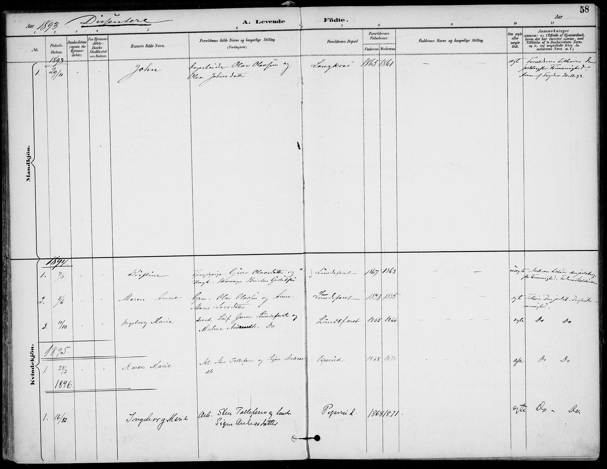 SAKO, Lunde kirkebøker, F/Fa/L0003: Ministerialbok nr. I 3, 1893-1902, s. 58