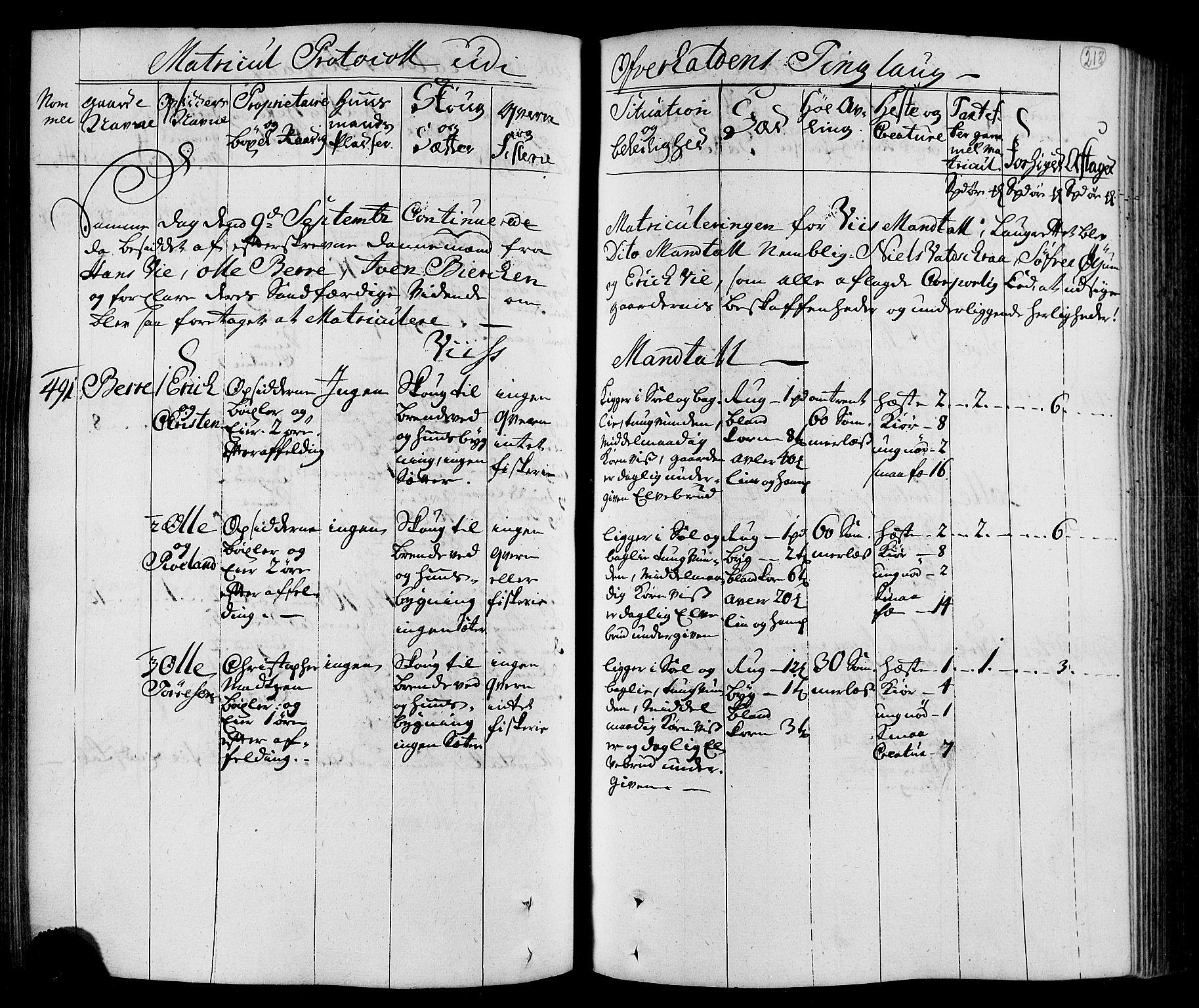 RA, Rentekammeret inntil 1814, Realistisk ordnet avdeling, N/Nb/Nbf/L0168: Namdalen eksaminasjonsprotokoll, 1723, s. 217b-218a