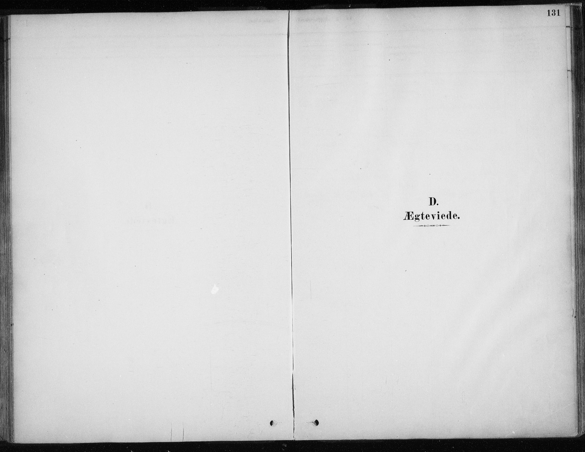 SATØ, Karasjok sokneprestkontor, H/Ha/L0002kirke: Ministerialbok nr. 2, 1885-1906, s. 131