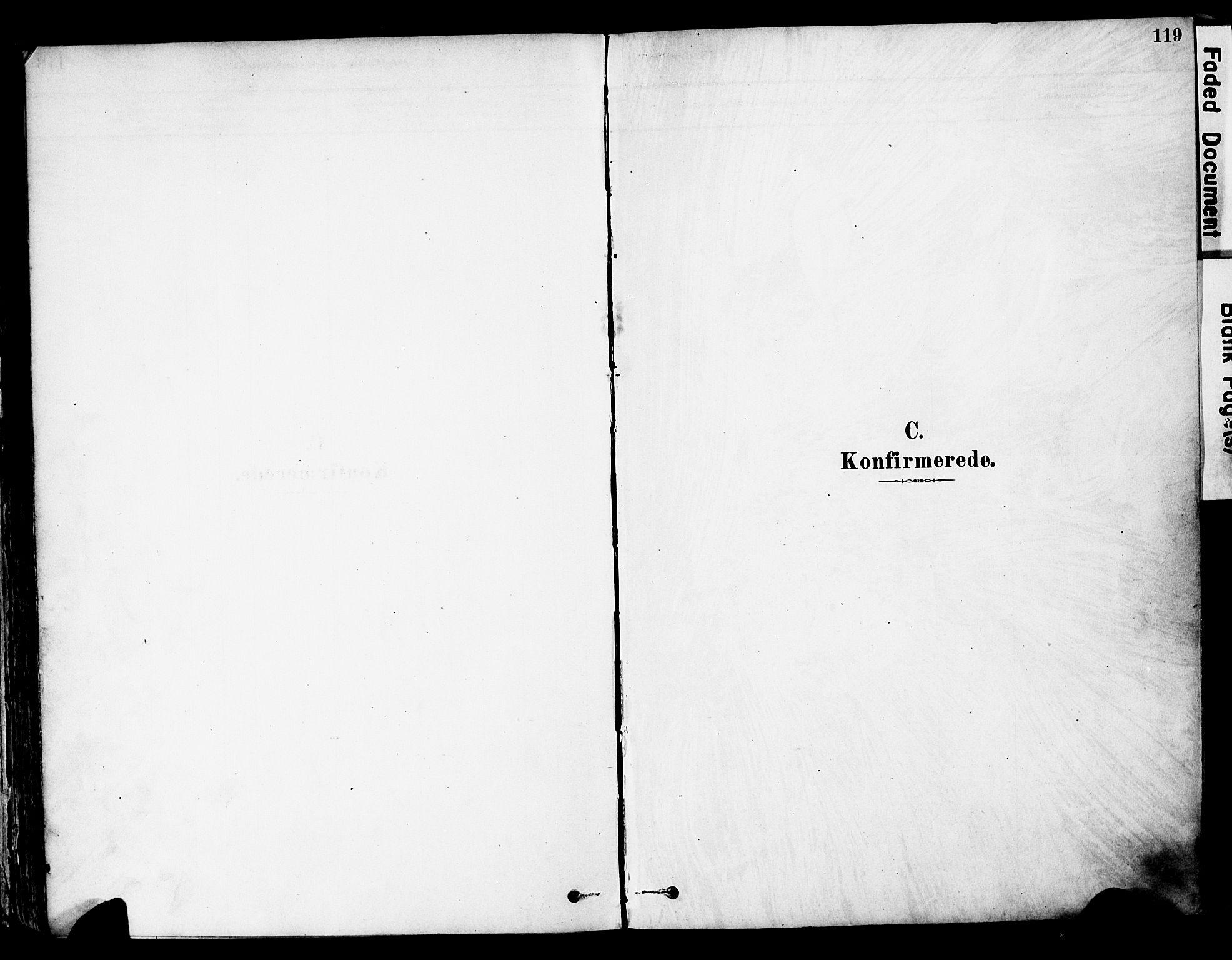 SAH, Øyer prestekontor, Ministerialbok nr. 8, 1878-1897, s. 119