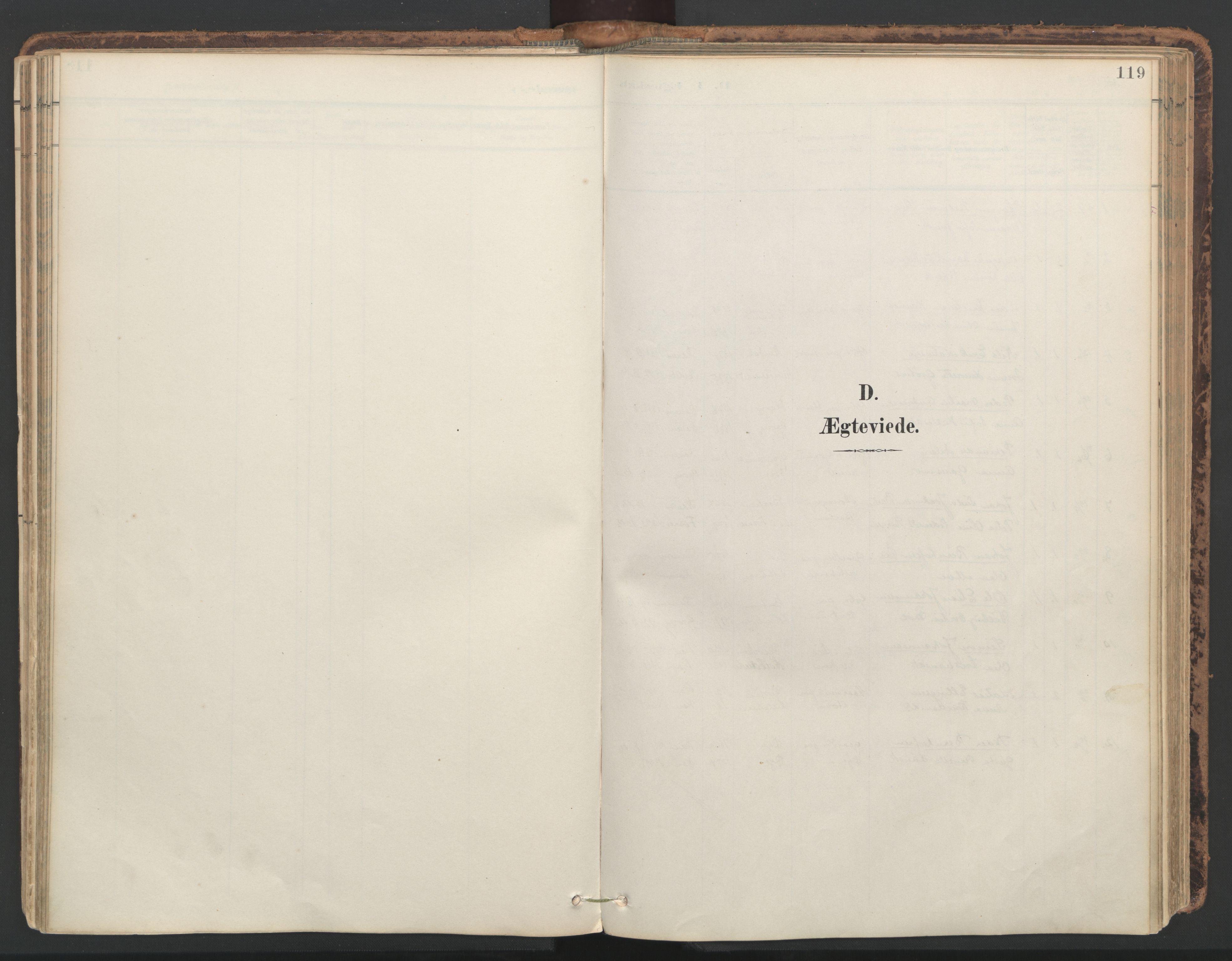 SAT, Ministerialprotokoller, klokkerbøker og fødselsregistre - Nord-Trøndelag, 764/L0556: Ministerialbok nr. 764A11, 1897-1924, s. 119