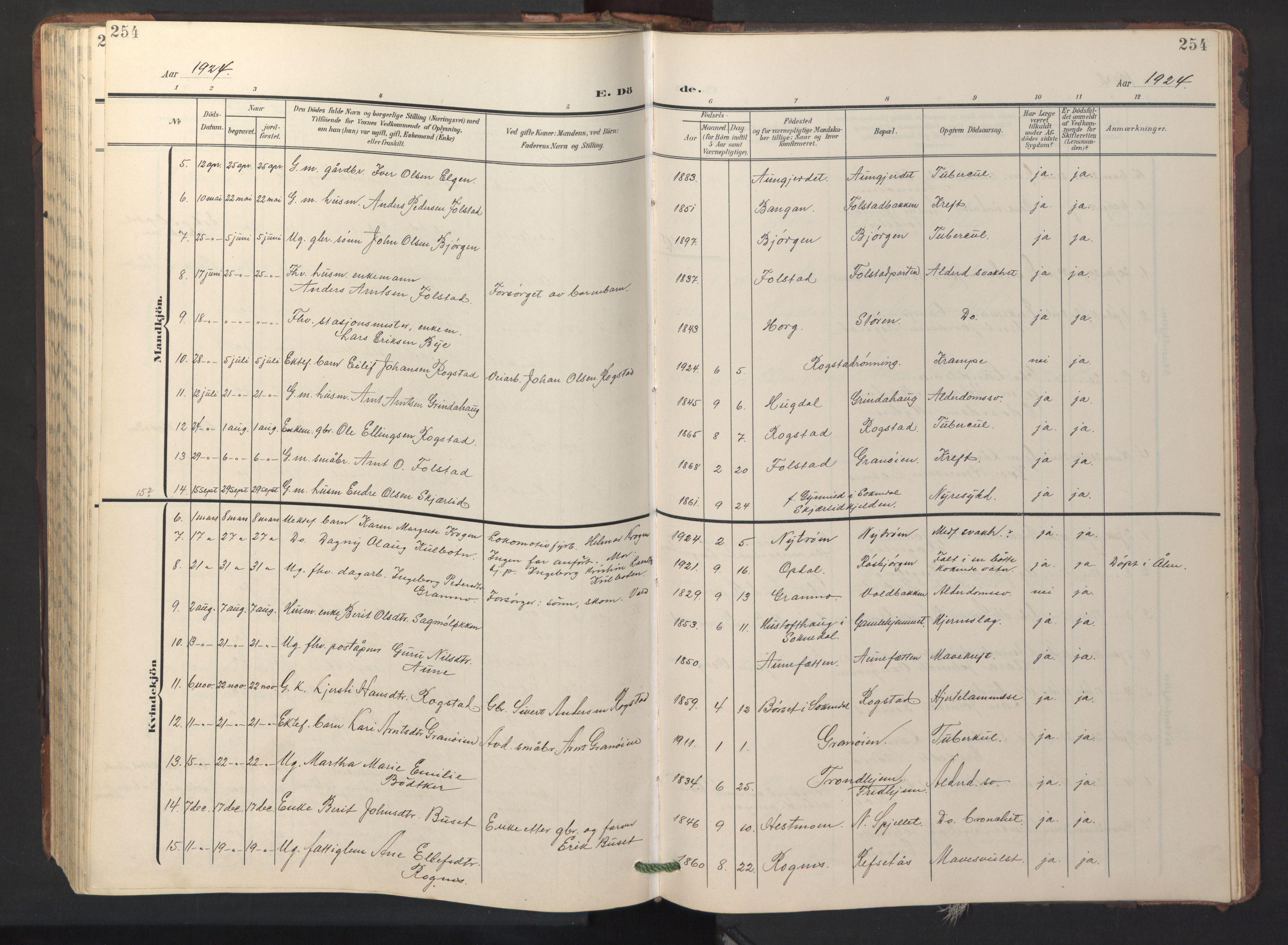 SAT, Ministerialprotokoller, klokkerbøker og fødselsregistre - Sør-Trøndelag, 687/L1019: Klokkerbok nr. 687C03, 1904-1931, s. 254