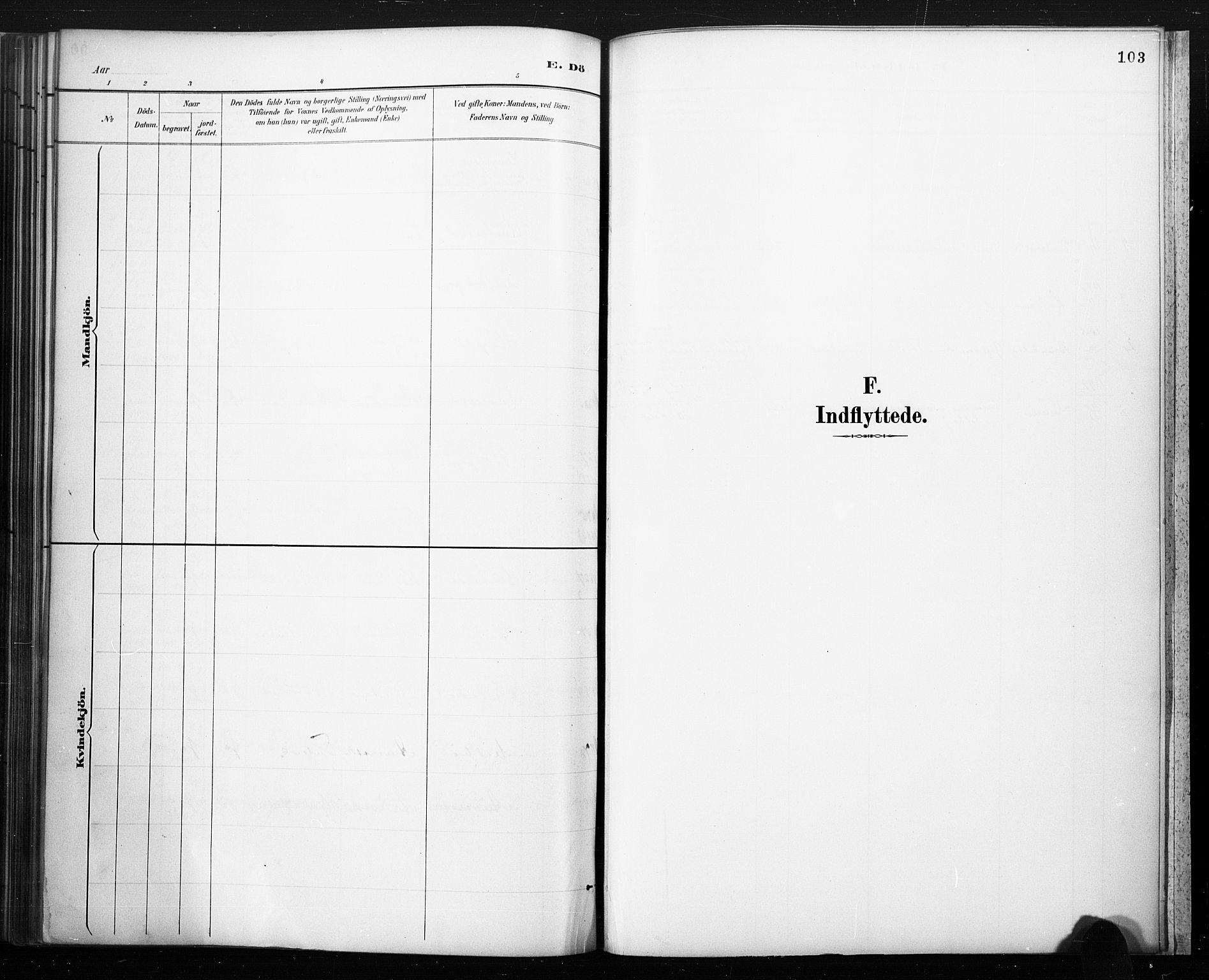 SAKO, Lårdal kirkebøker, F/Fc/L0002: Ministerialbok nr. III 2, 1887-1906, s. 103