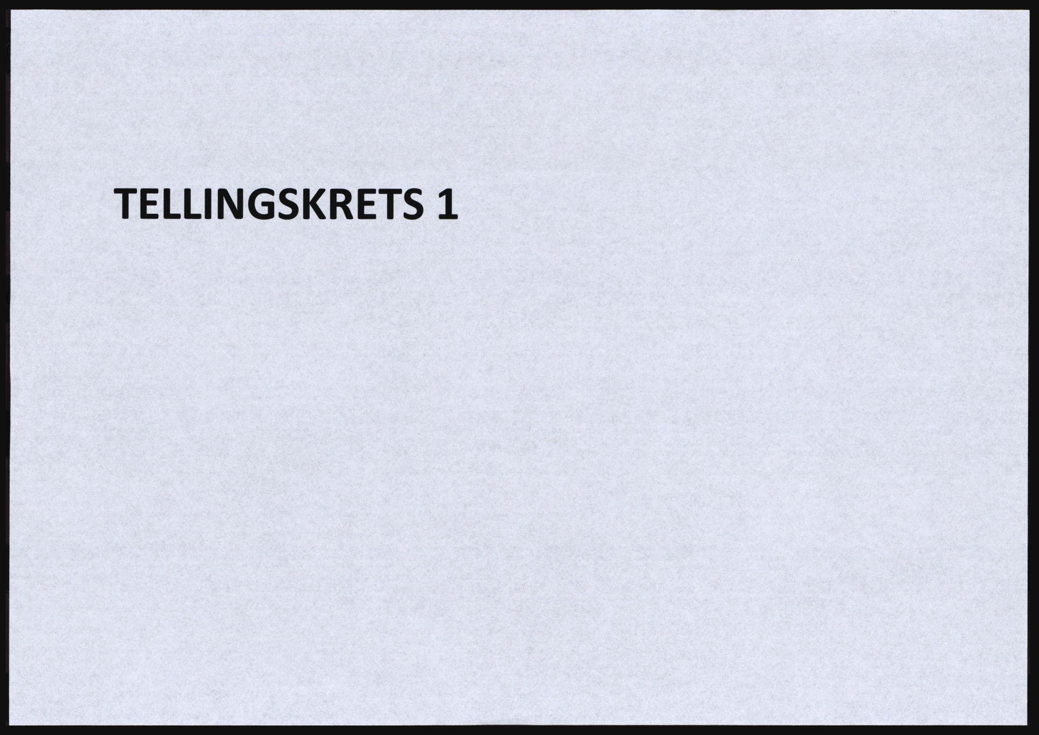 SAT, Folketelling 1920 for 1634 Oppdal herred, 1920, s. 45