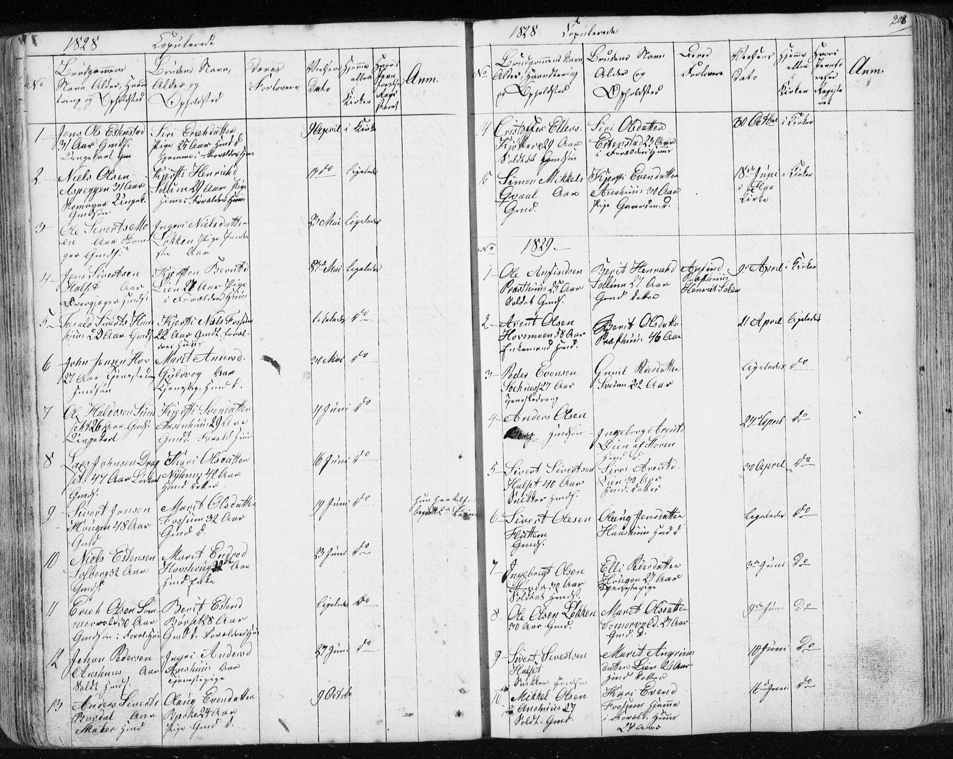 SAT, Ministerialprotokoller, klokkerbøker og fødselsregistre - Sør-Trøndelag, 689/L1043: Klokkerbok nr. 689C02, 1816-1892, s. 208