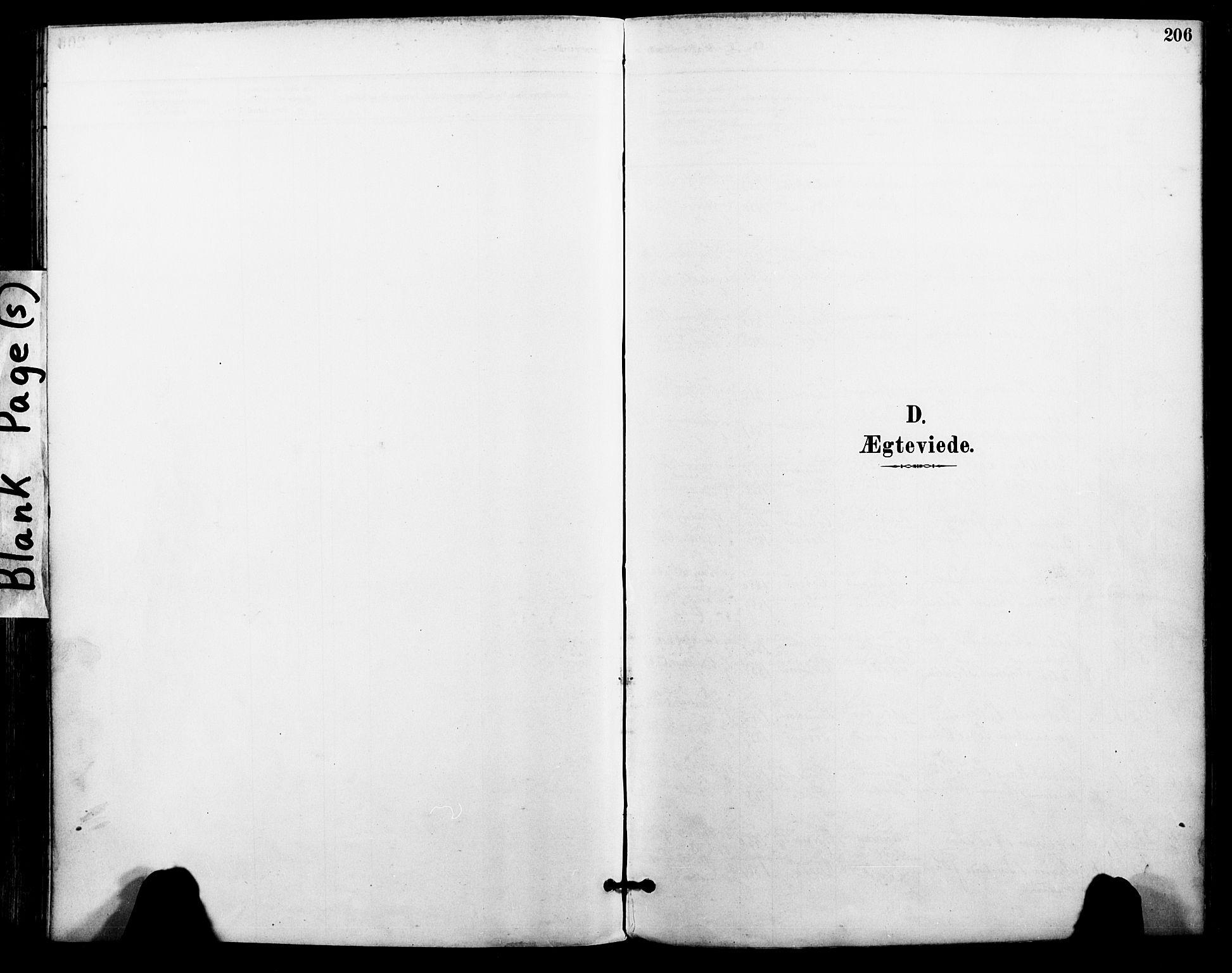 SAT, Ministerialprotokoller, klokkerbøker og fødselsregistre - Nordland, 801/L0010: Ministerialbok nr. 801A10, 1888-1899, s. 206