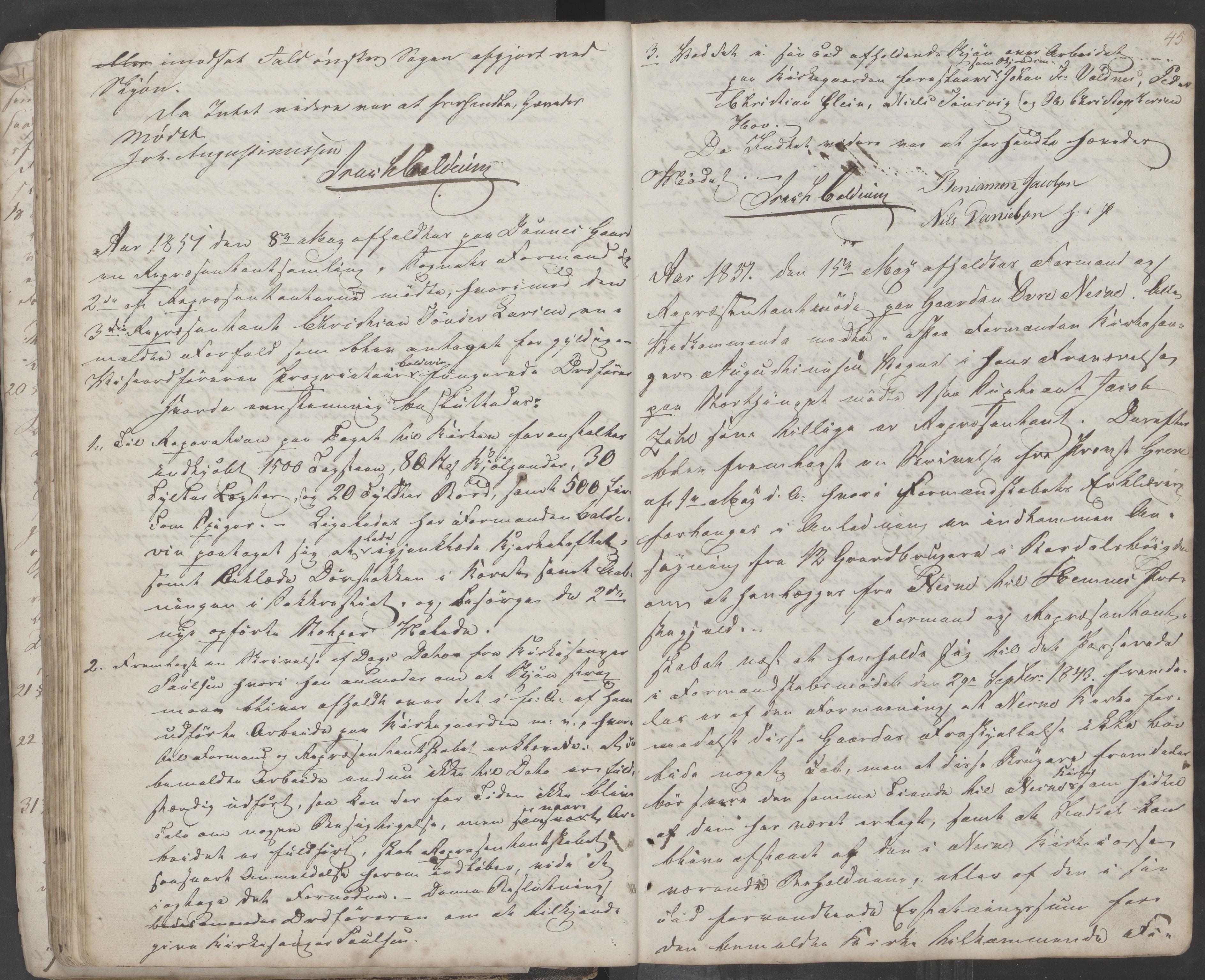 AIN, Nesna kommune. Formannskapet, 100/L0001: Møtebok, 1838-1873, s. 45