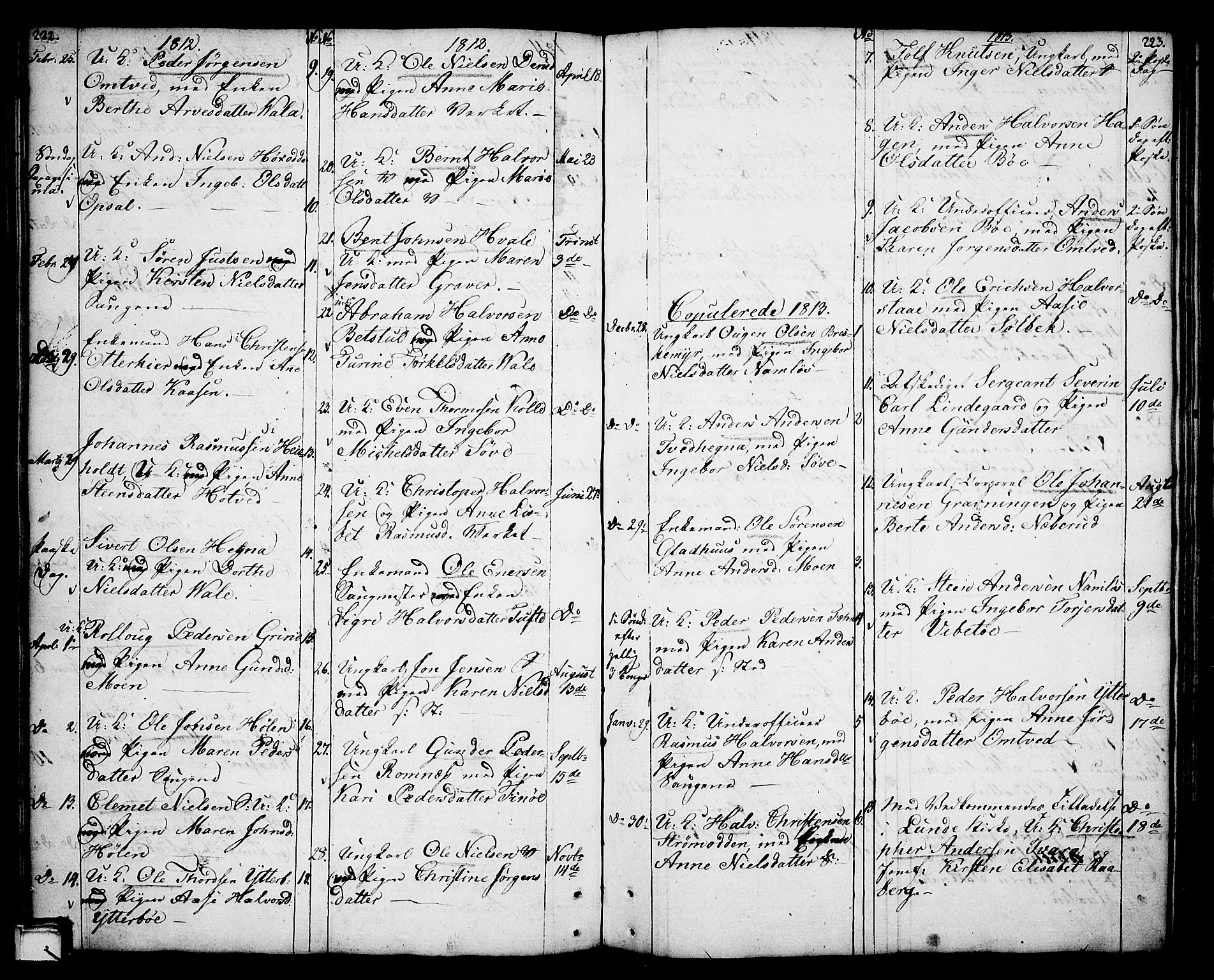 SAKO, Holla kirkebøker, F/Fa/L0002: Ministerialbok nr. 2, 1779-1814, s. 222-223