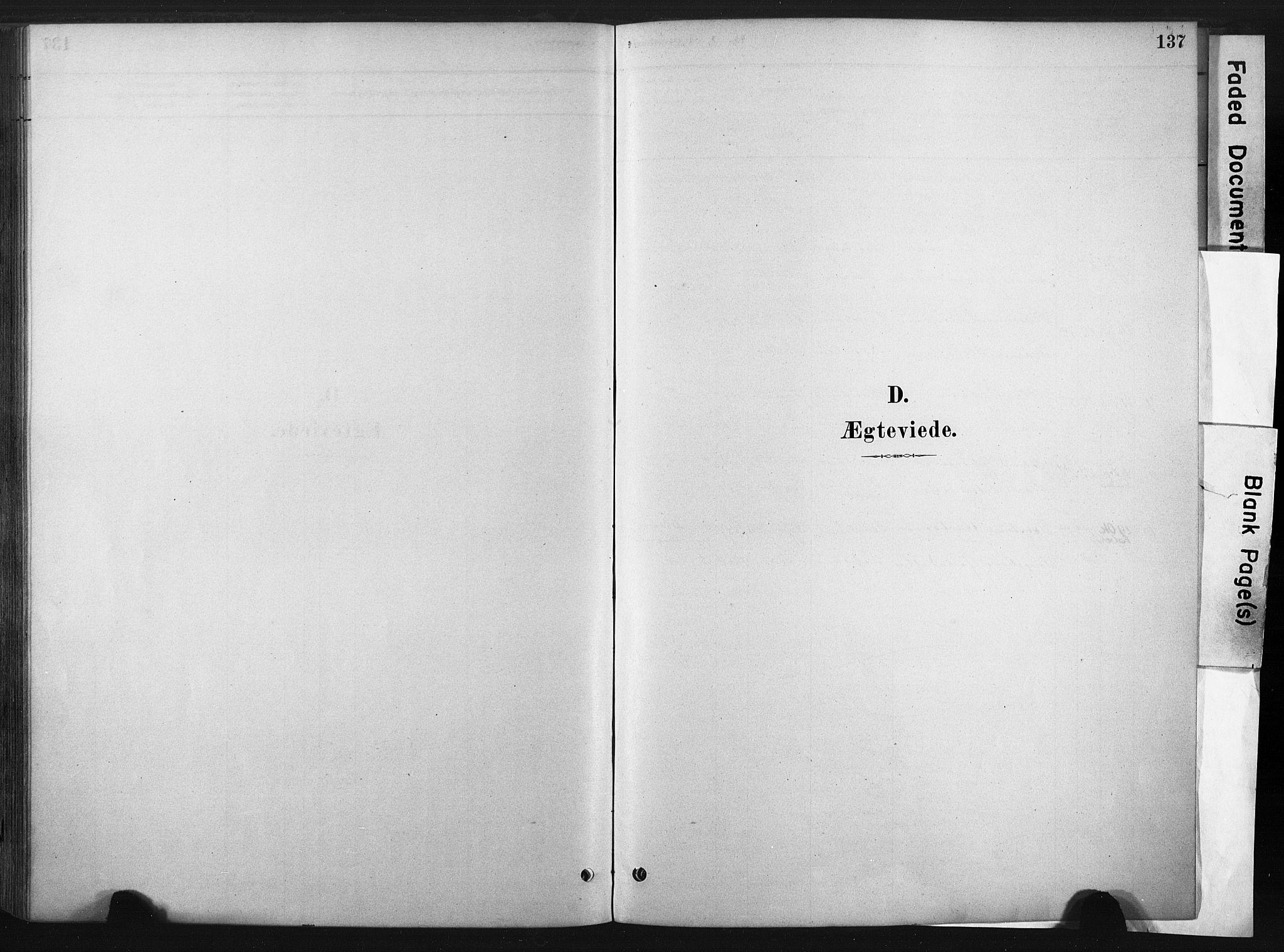 SAT, Ministerialprotokoller, klokkerbøker og fødselsregistre - Sør-Trøndelag, 667/L0795: Ministerialbok nr. 667A03, 1879-1907, s. 137