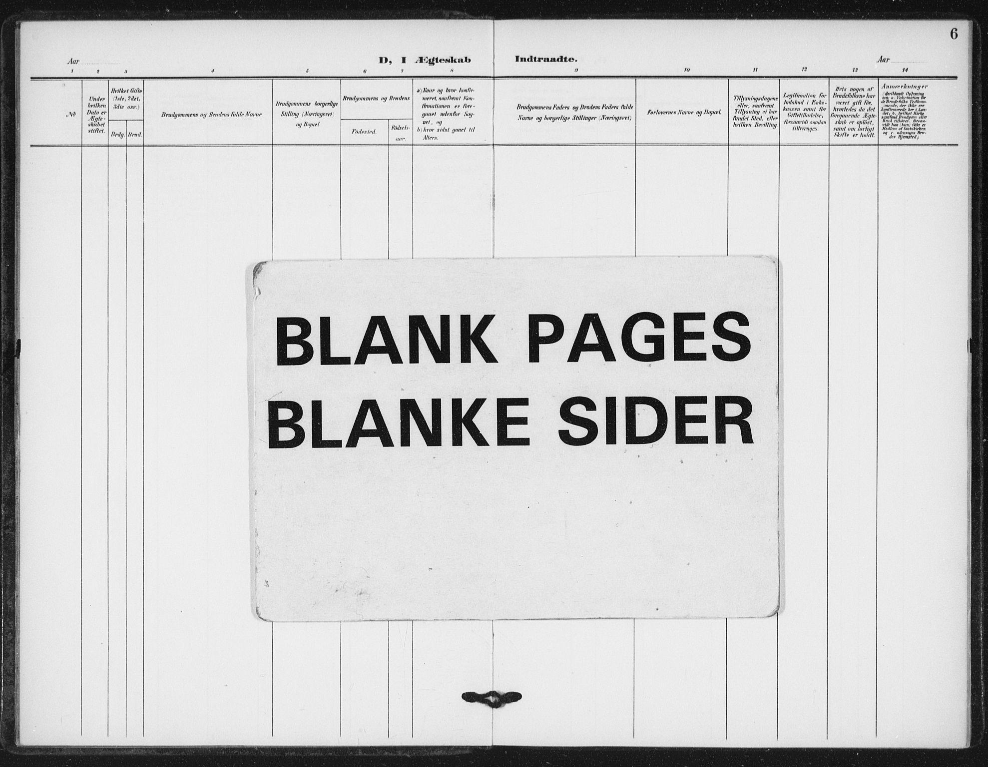 SAT, Ministerialprotokoller, klokkerbøker og fødselsregistre - Sør-Trøndelag, 623/L0472: Ministerialbok nr. 623A06, 1907-1938, s. 6