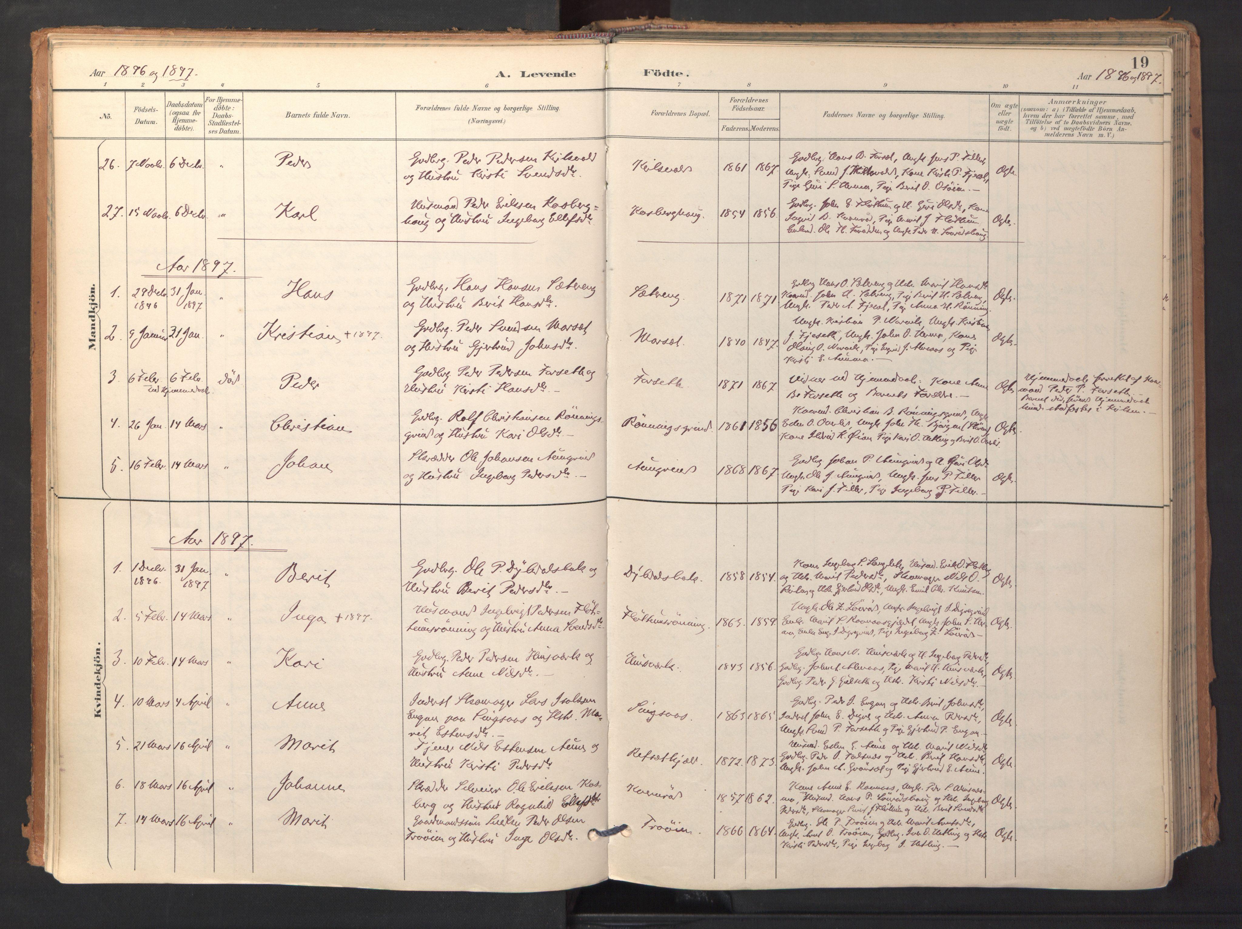 SAT, Ministerialprotokoller, klokkerbøker og fødselsregistre - Sør-Trøndelag, 688/L1025: Ministerialbok nr. 688A02, 1891-1909, s. 19