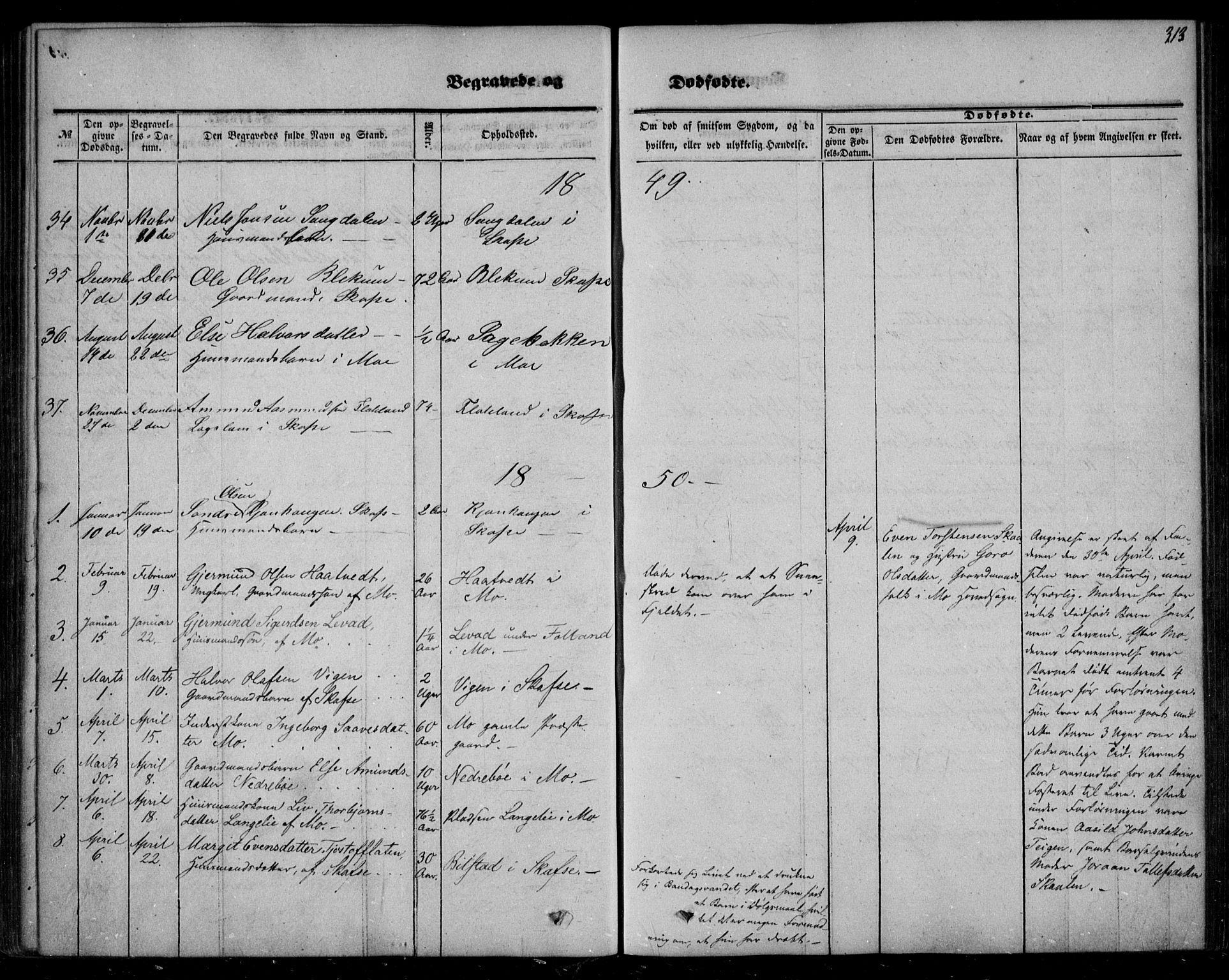 SAKO, Mo kirkebøker, F/Fa/L0005: Ministerialbok nr. I 5, 1844-1864, s. 313