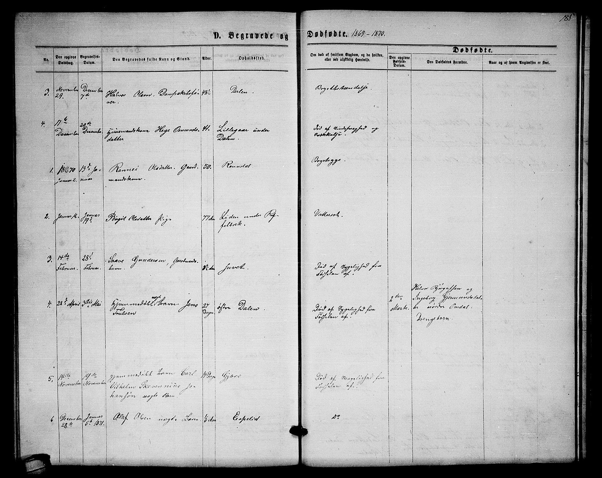 SAKO, Lårdal kirkebøker, G/Gb/L0002: Klokkerbok nr. II 2, 1865-1888, s. 185