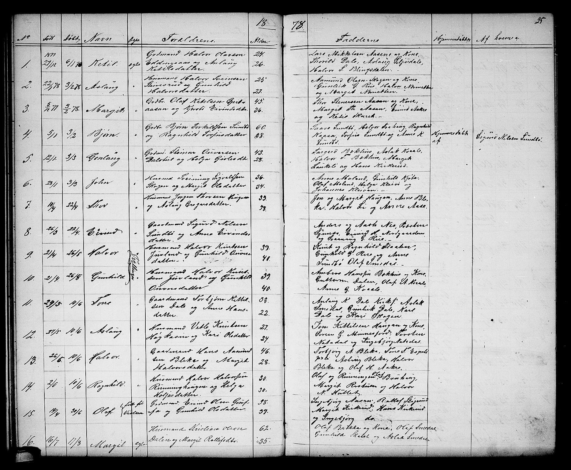 SAKO, Seljord kirkebøker, G/Gb/L0003: Klokkerbok nr. II 3, 1863-1884, s. 25