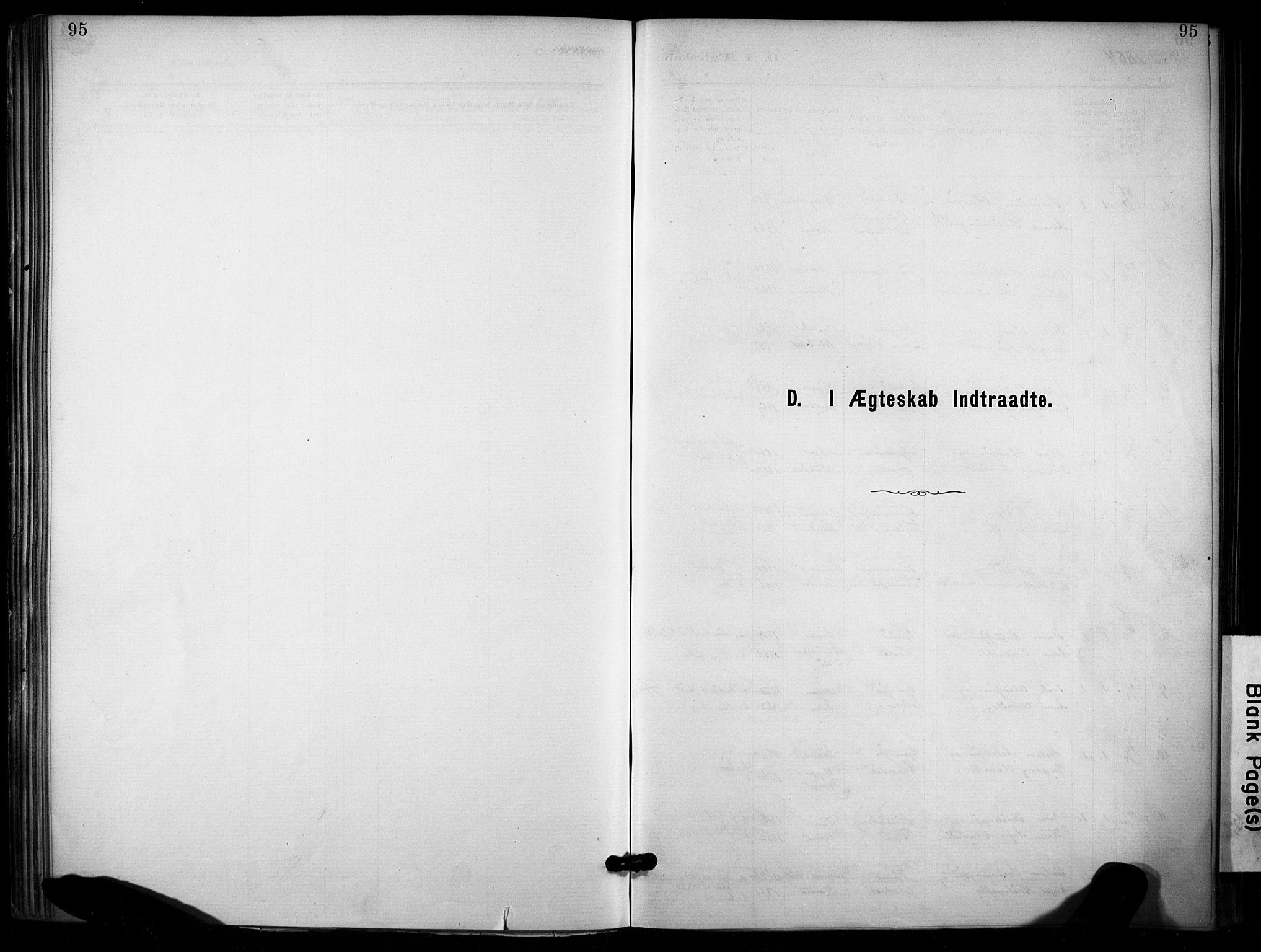 SAKO, Lunde kirkebøker, F/Fa/L0002: Ministerialbok nr. I 2, 1884-1892, s. 95
