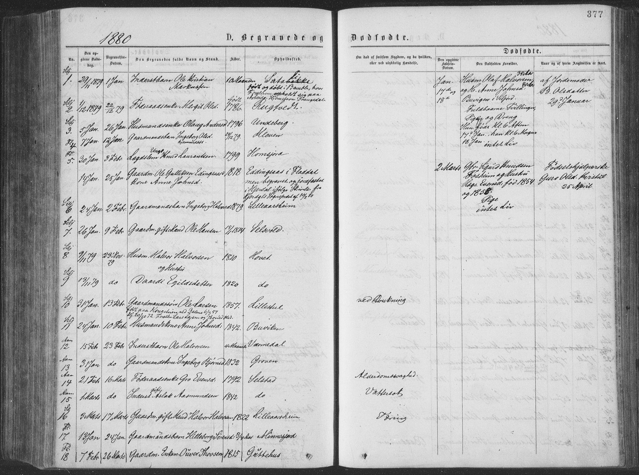 SAKO, Seljord kirkebøker, F/Fa/L0014: Ministerialbok nr. I 14, 1877-1886, s. 377