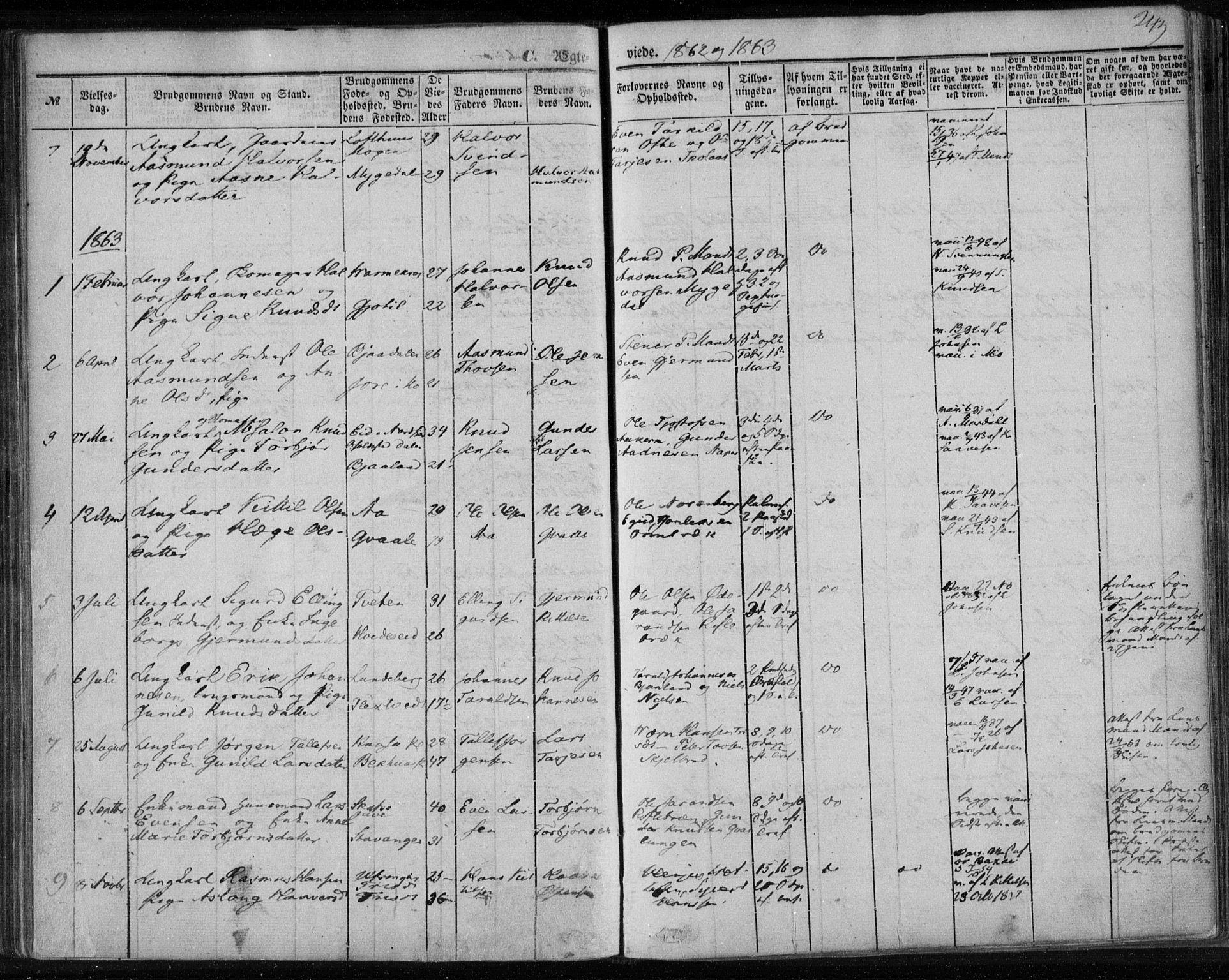 SAKO, Lårdal kirkebøker, F/Fa/L0006: Ministerialbok nr. I 6, 1861-1886, s. 249