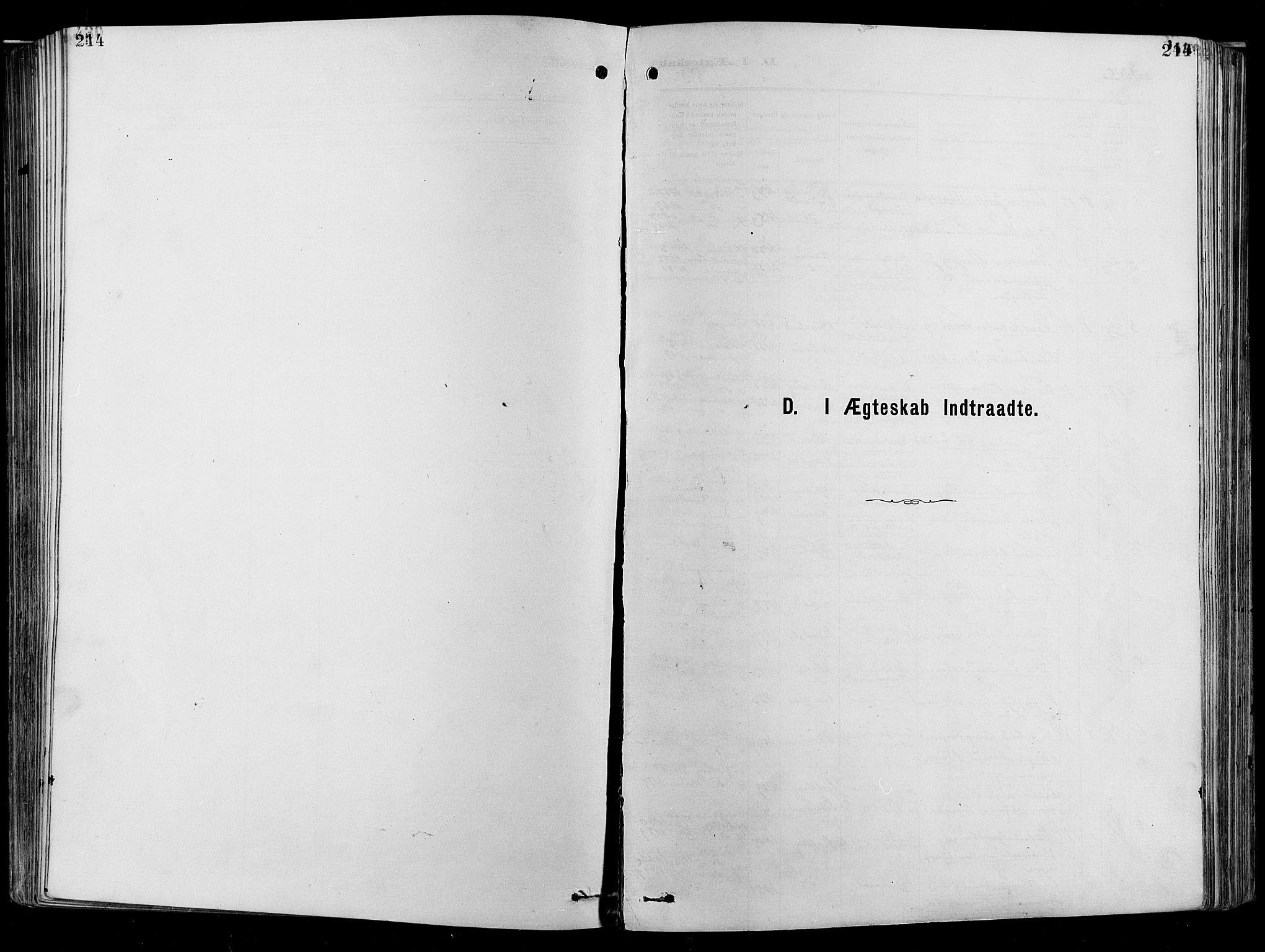 SAO, Garnisonsmenigheten Kirkebøker, F/Fa/L0012: Ministerialbok nr. 12, 1880-1893, s. 214