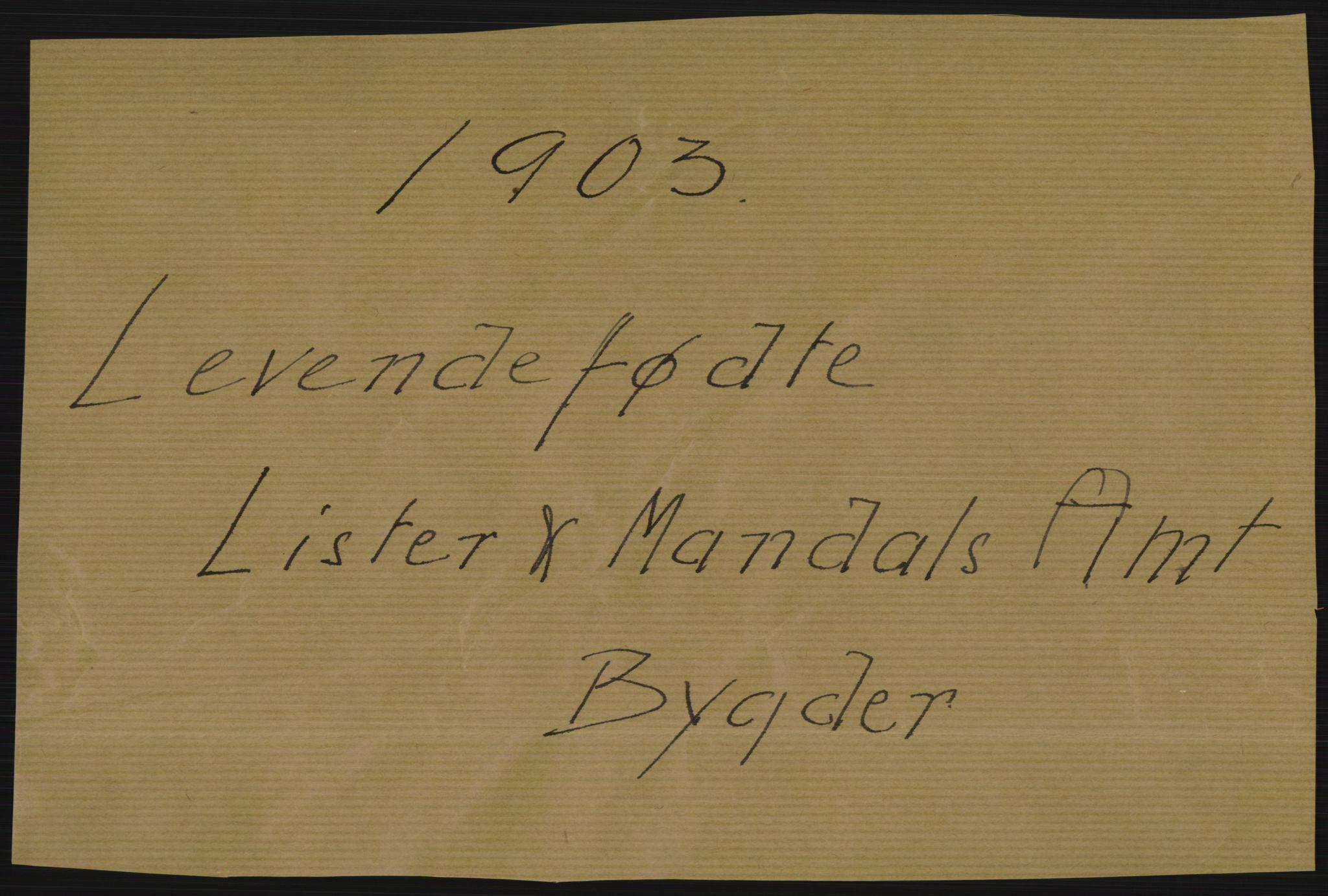 RA, Statistisk sentralbyrå, Sosiodemografiske emner, Befolkning, D/Df/Dfa/Dfaa/L0011: Lister og Mandal amt: Fødte, gifte, døde, 1903, s. 1
