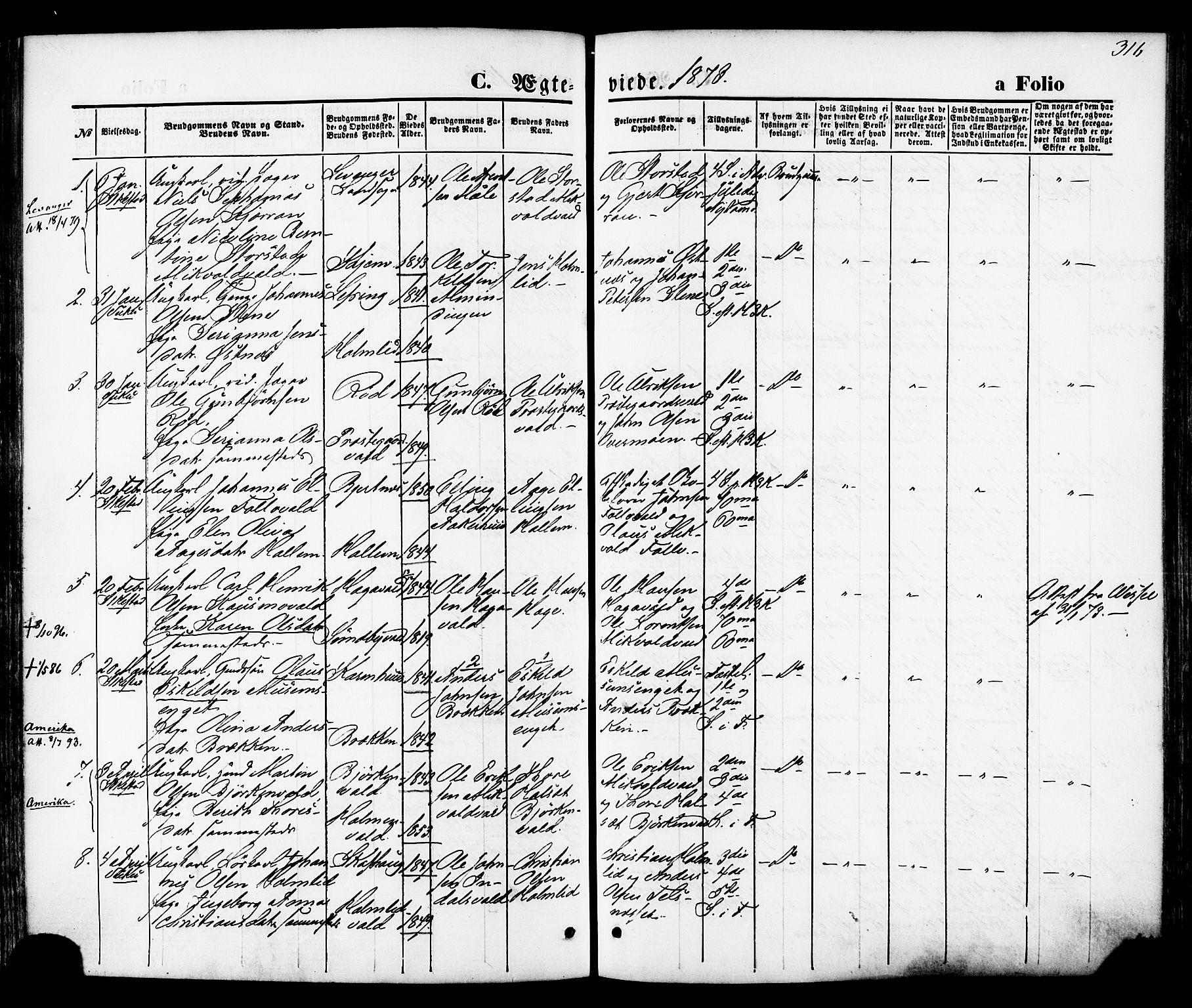 SAT, Ministerialprotokoller, klokkerbøker og fødselsregistre - Nord-Trøndelag, 723/L0242: Ministerialbok nr. 723A11, 1870-1880, s. 316